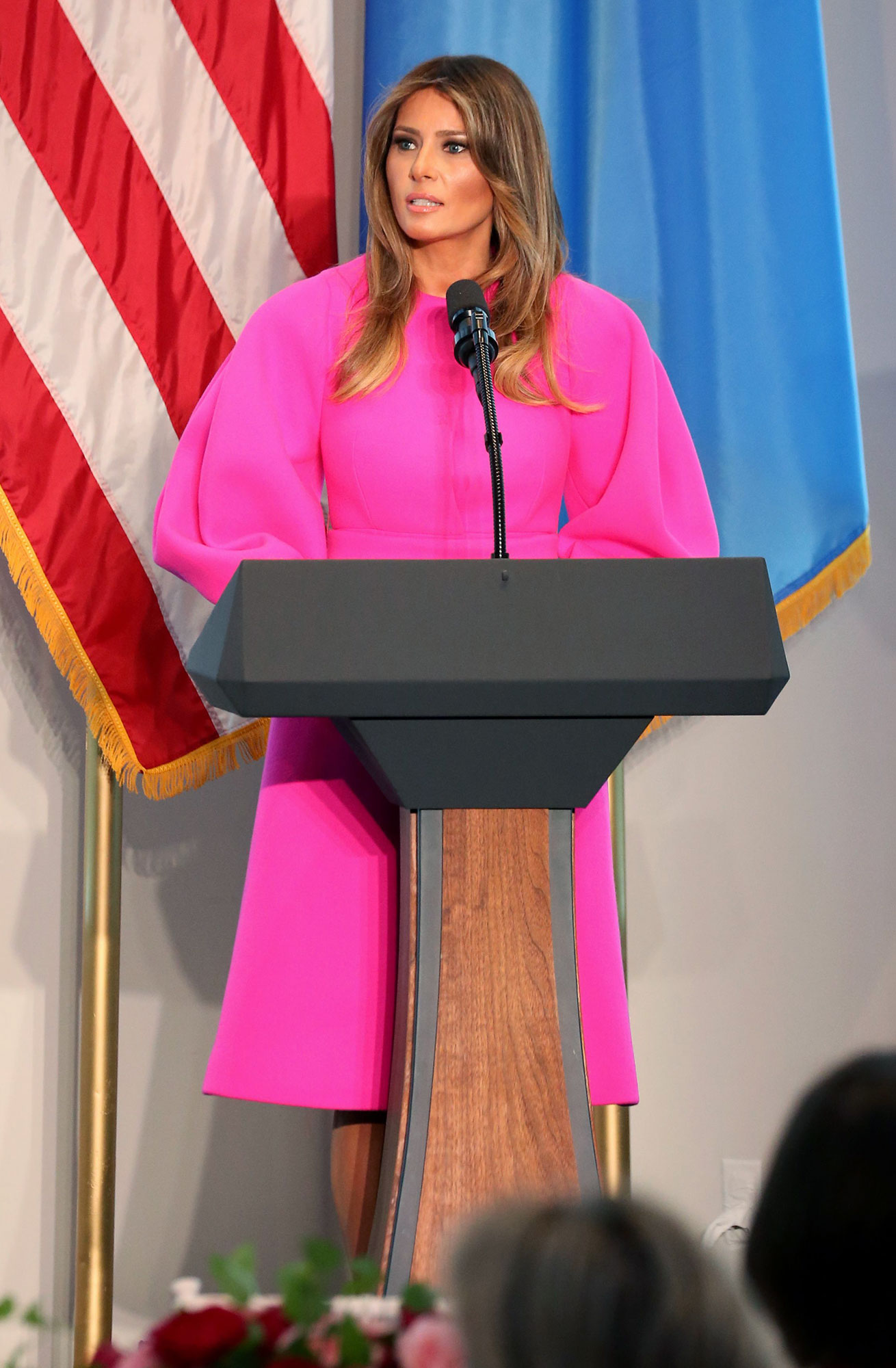 United Nations Luncheon, New York, USA - 20 Sep 2017