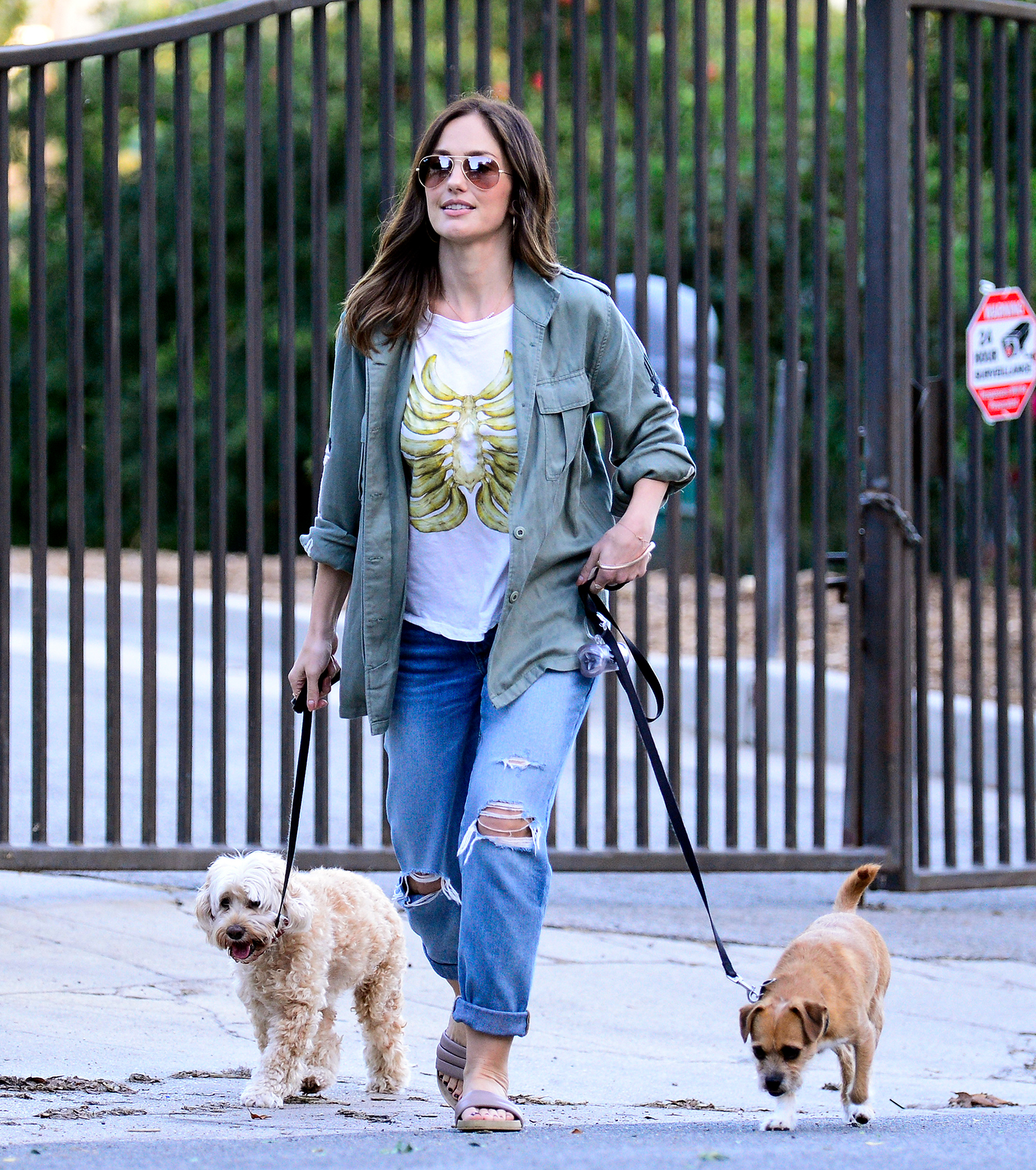 EXCLUSIVE: Dog lover Minka Kelly plays with her pooches in LA