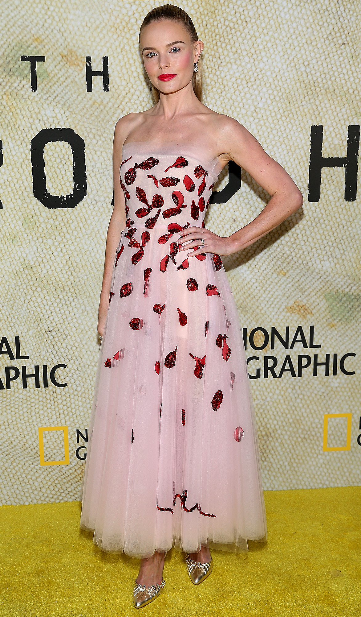 "Premiere Of National Geographic's ""The Long Road Home"" - Arrivals"