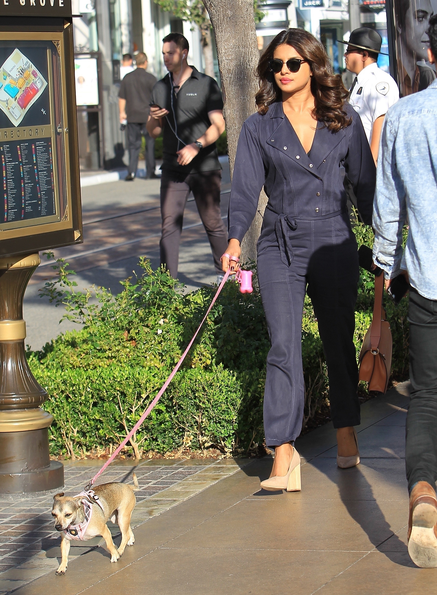 *EXCLUSIVE* Priyanka Chopra takes her Instagram famous dog, Diana, to The Grove