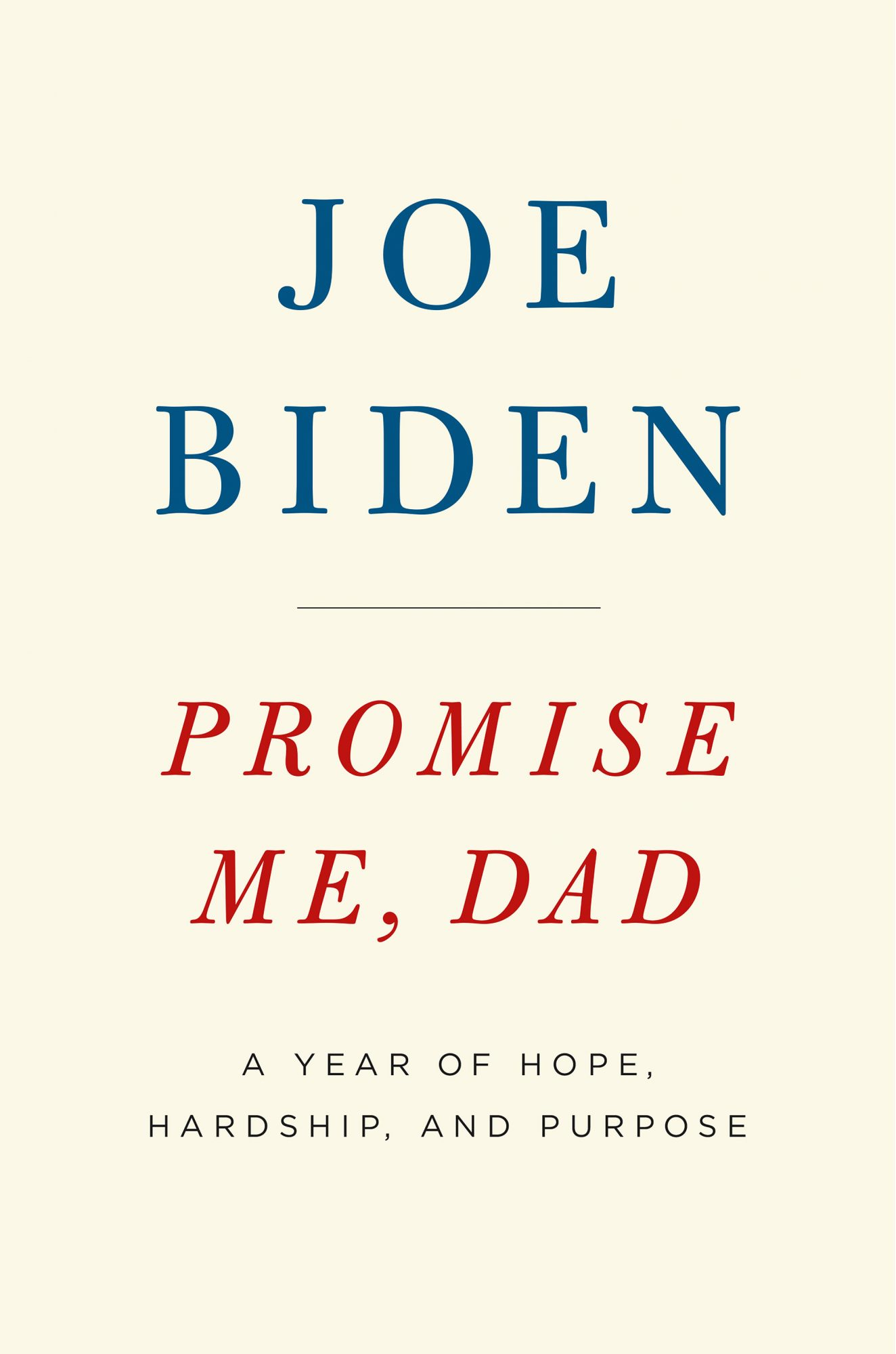joe-biden-beau-book-2
