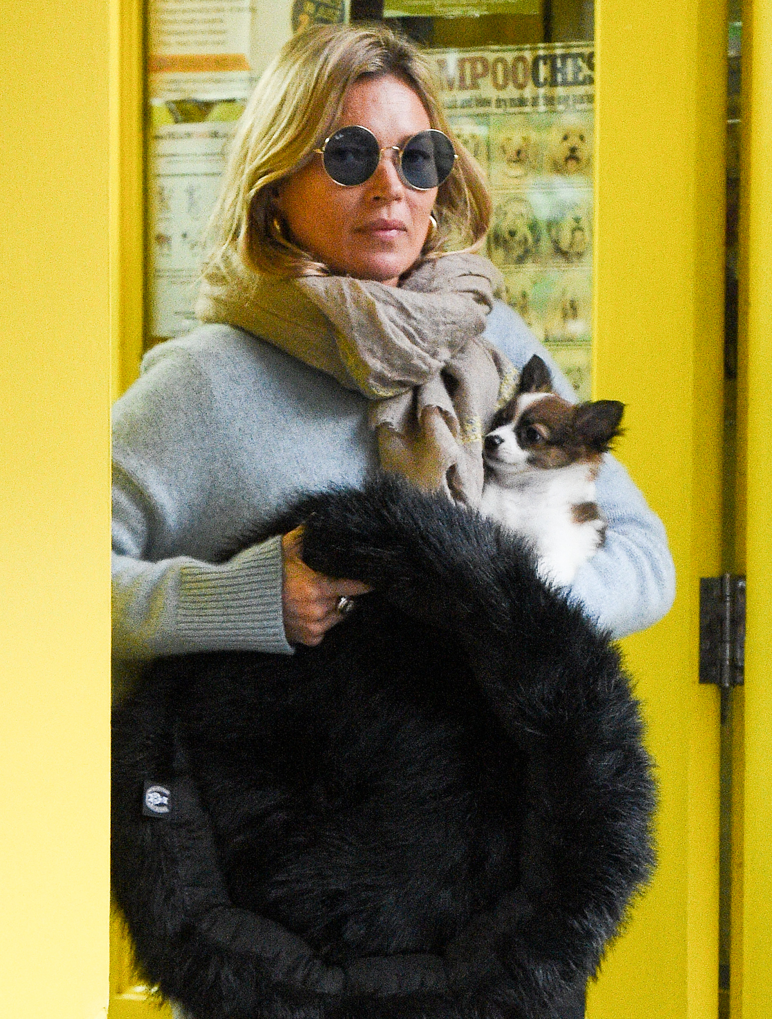 Kate Moss is seen for the first time in a month with a new puppy dog in Primrose Hill