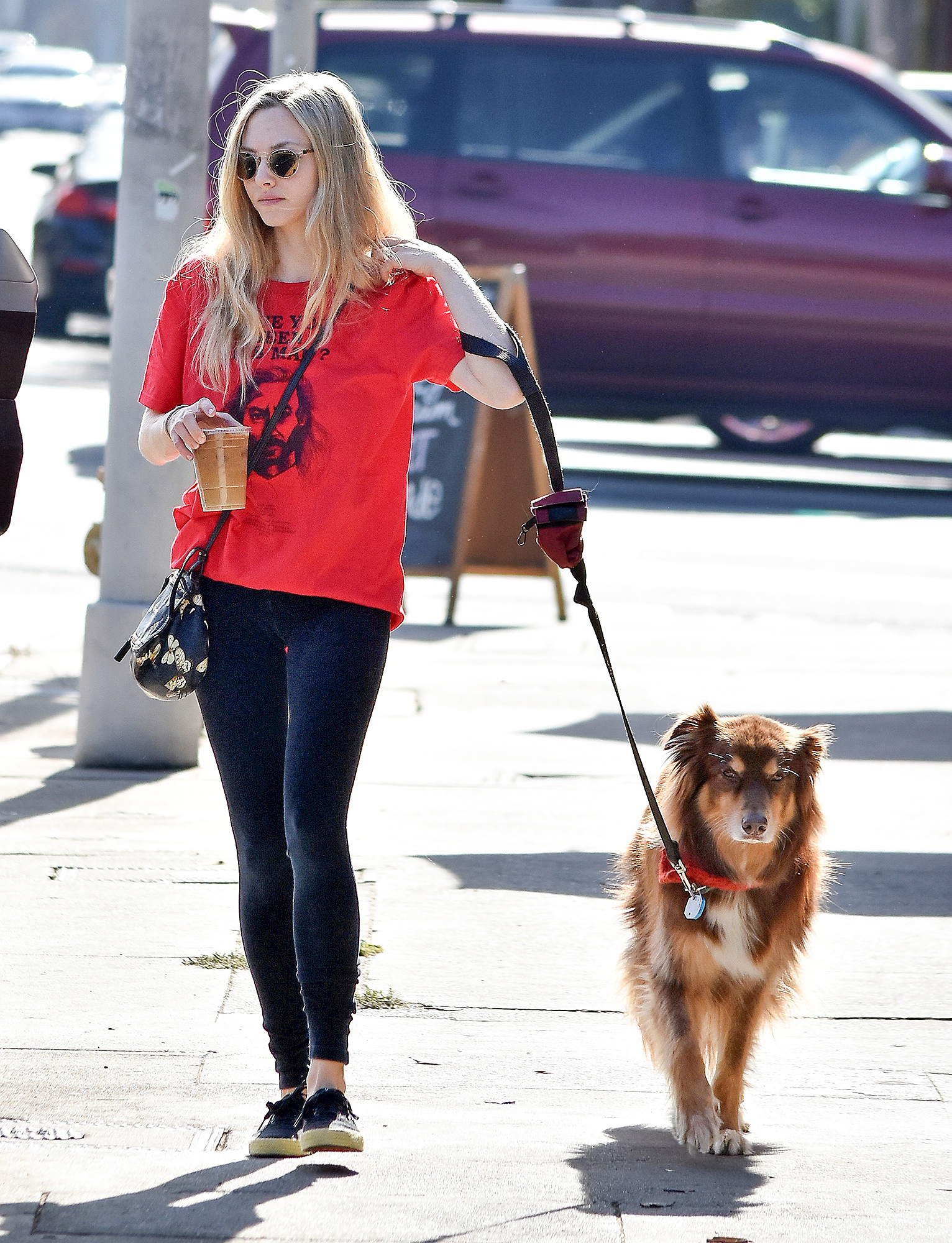 EXCLUSIVE: Amanda Seyfried keeps a casual look while she walks her dog and picks up coffee in West Hollywood.