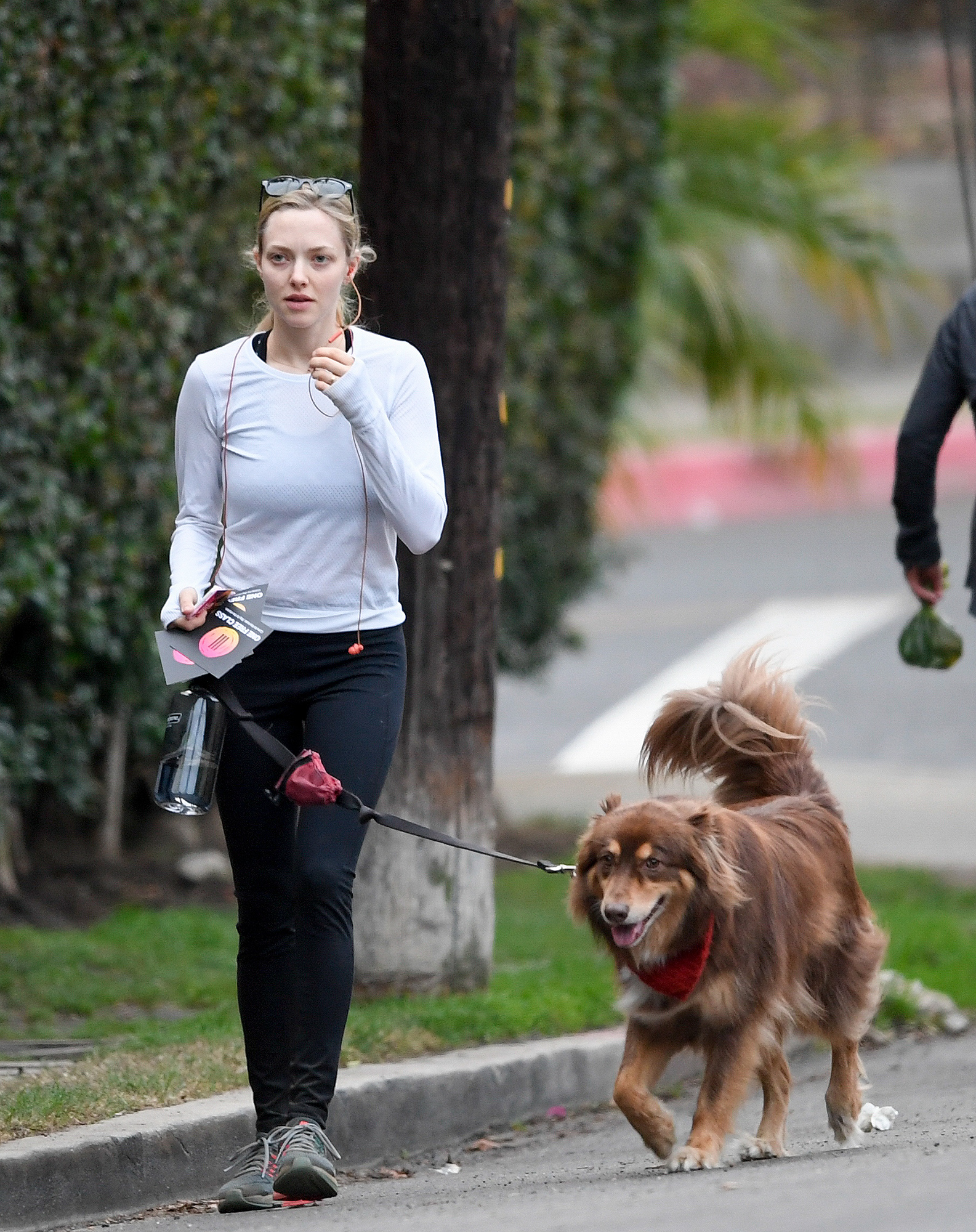 EXCLUSIVE: Amanda Seyfried takes her dog for a walk