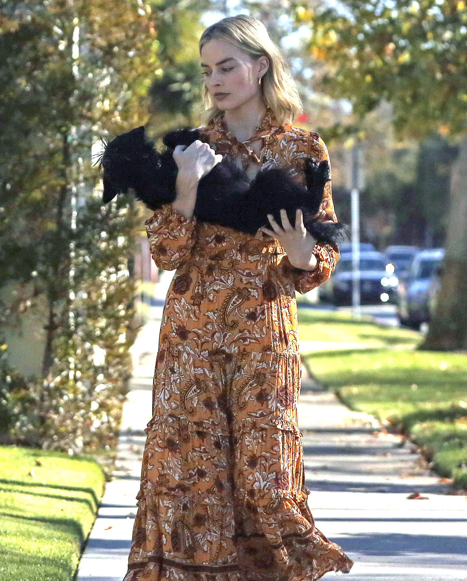 Margot Robbie and Tom Ackerley's Dog Get Loose in Their Neighborhood