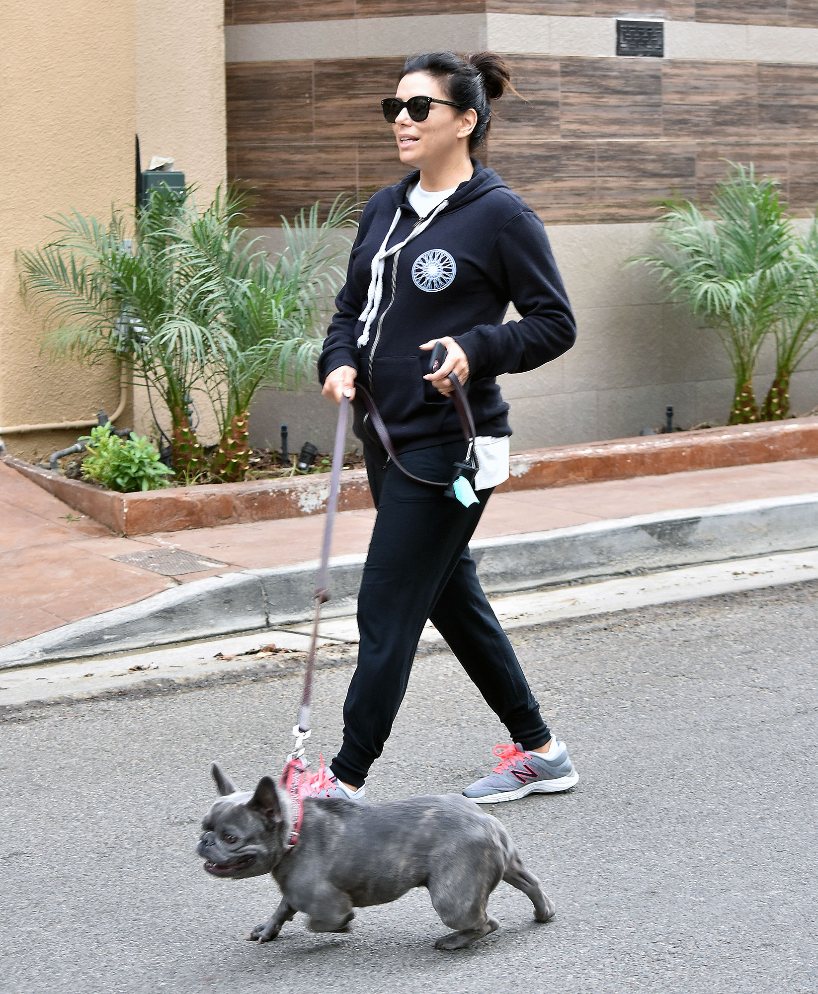 EXCLUSIVE: Pregnant Eva Longoria takes her pooch for an early morning walk in Los Angeles.