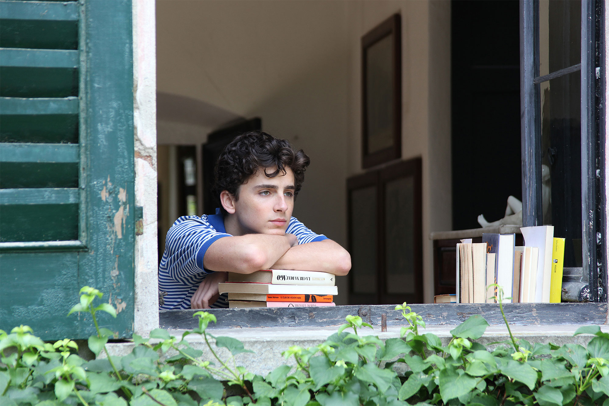 CALL ME BY YOUR NAME, Timothee Chalamet, 2017. ©Sony Pictures Classics/courtesy Everett Collection