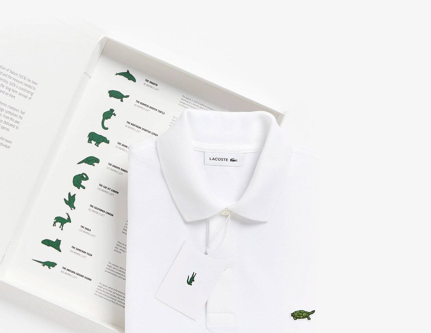 https://www.lacoste.com/us/saveourspecies.htmlSave Our SpeciesCR: Lacoste