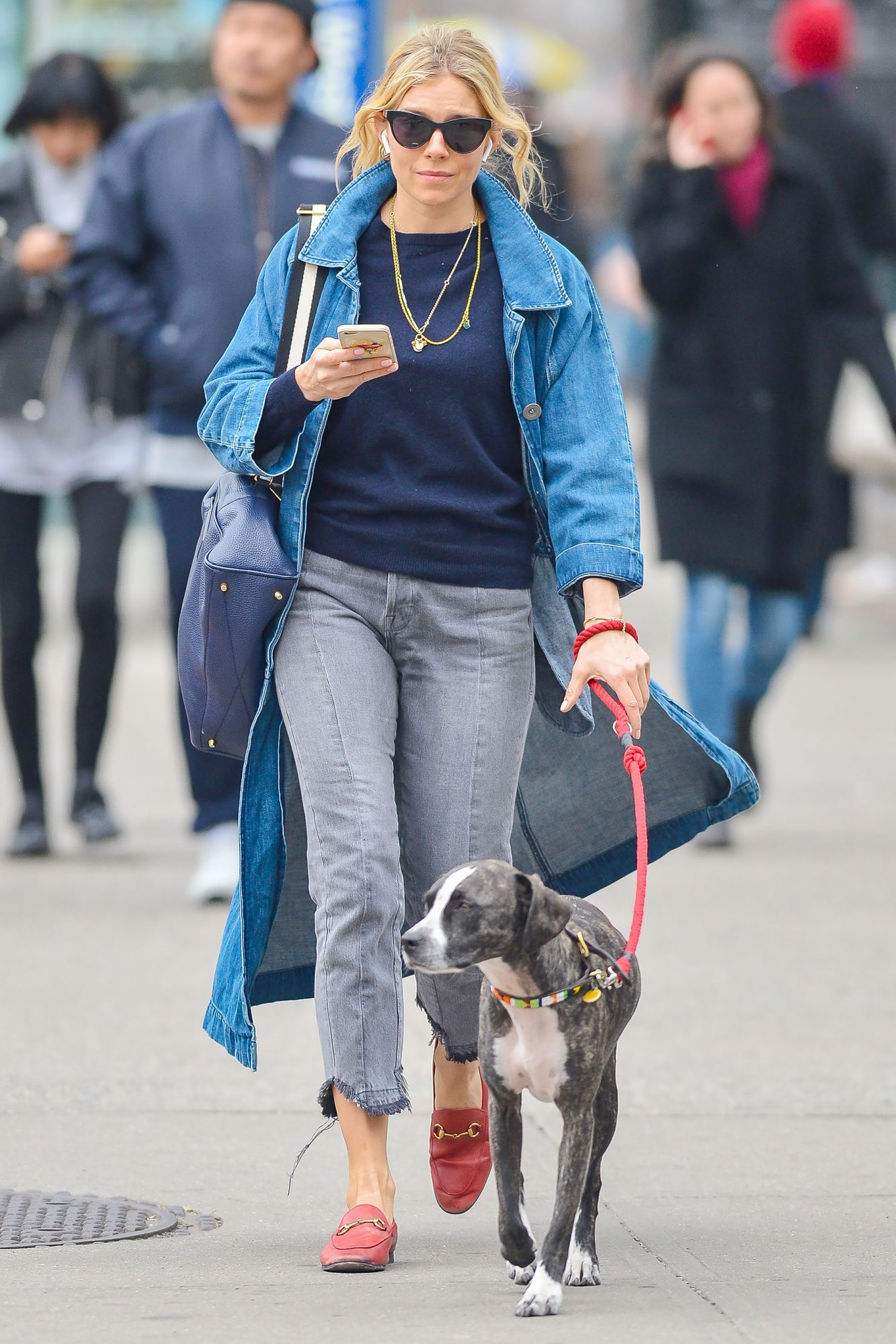 Sienna Miller is Spotted Walking Her Dog in New York City