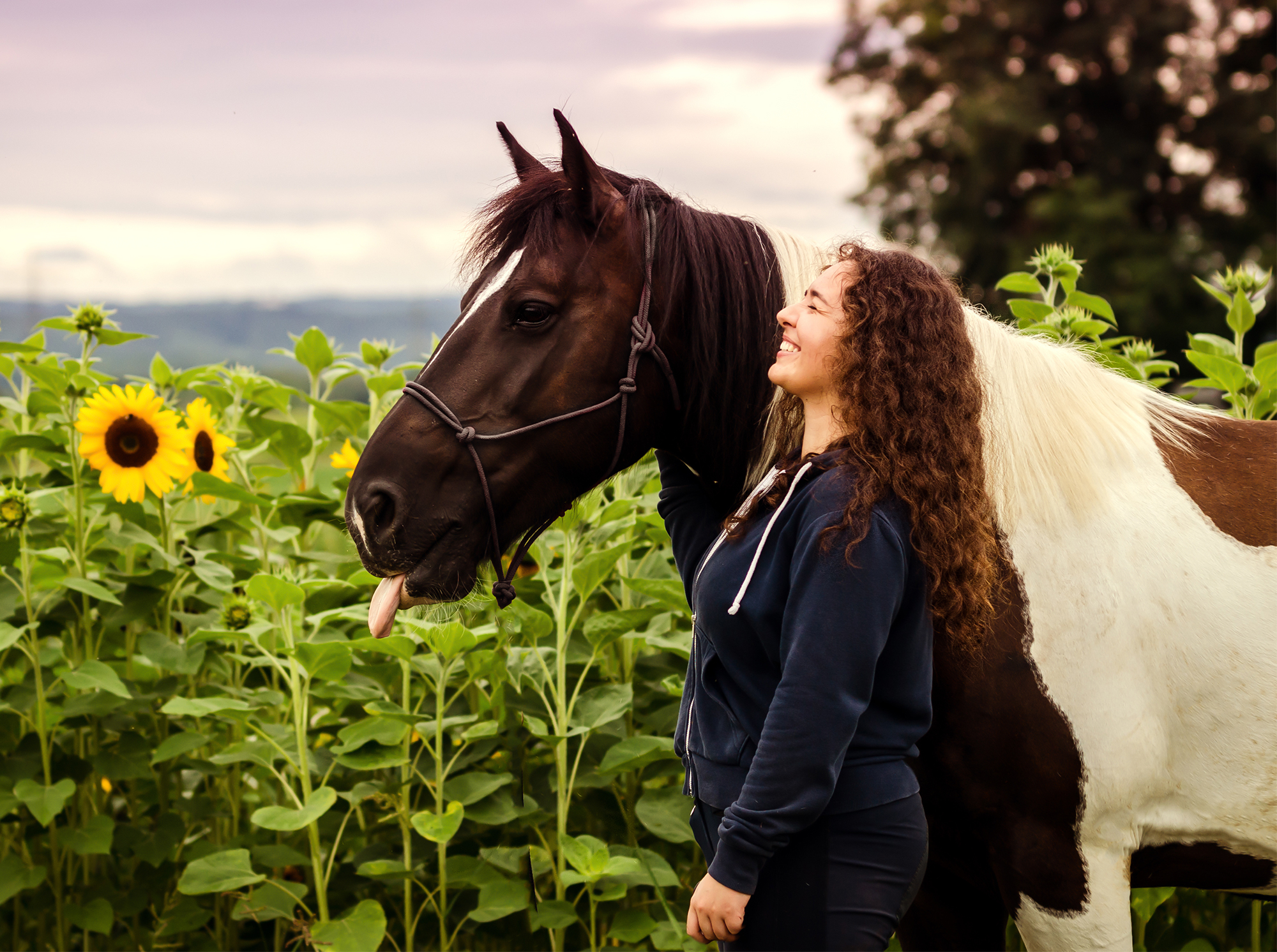 Side View Of Woman Standing By Horse On Sunflower Field