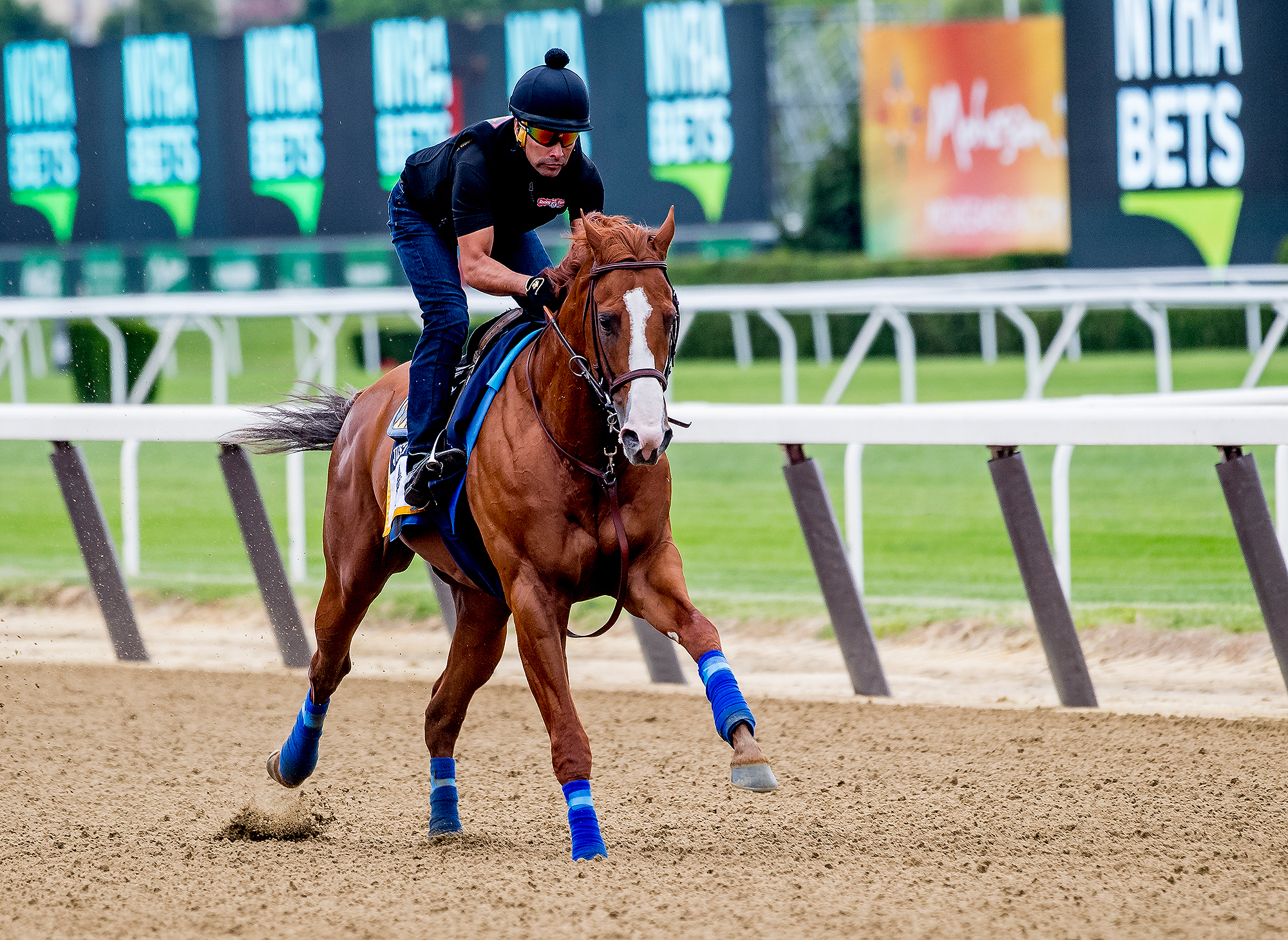 150th Belmont Stakes Preparations