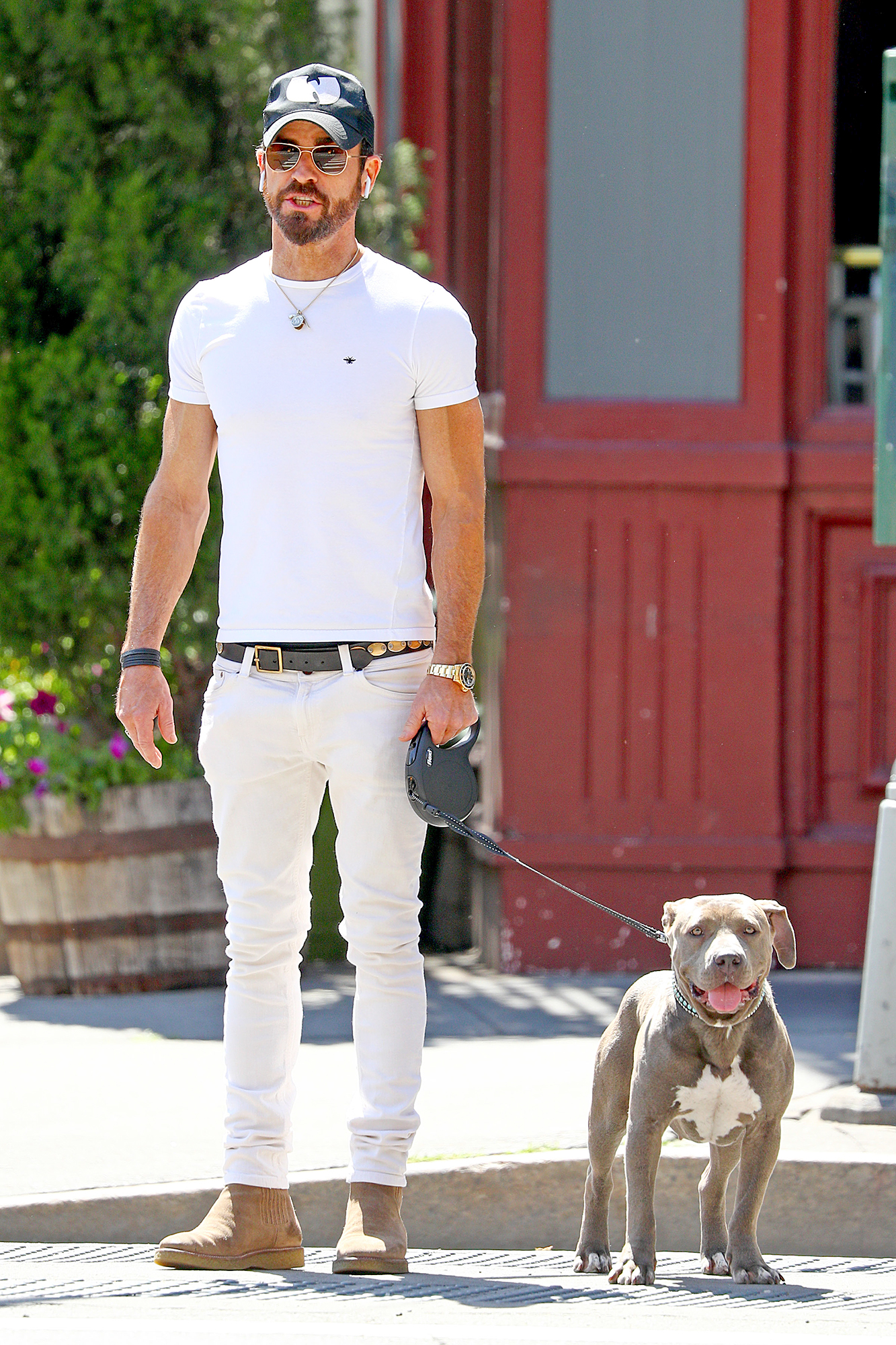 EXCLUSIVE: Justin Theroux is Pictured with His New Rescue Pitt Bull in New York City