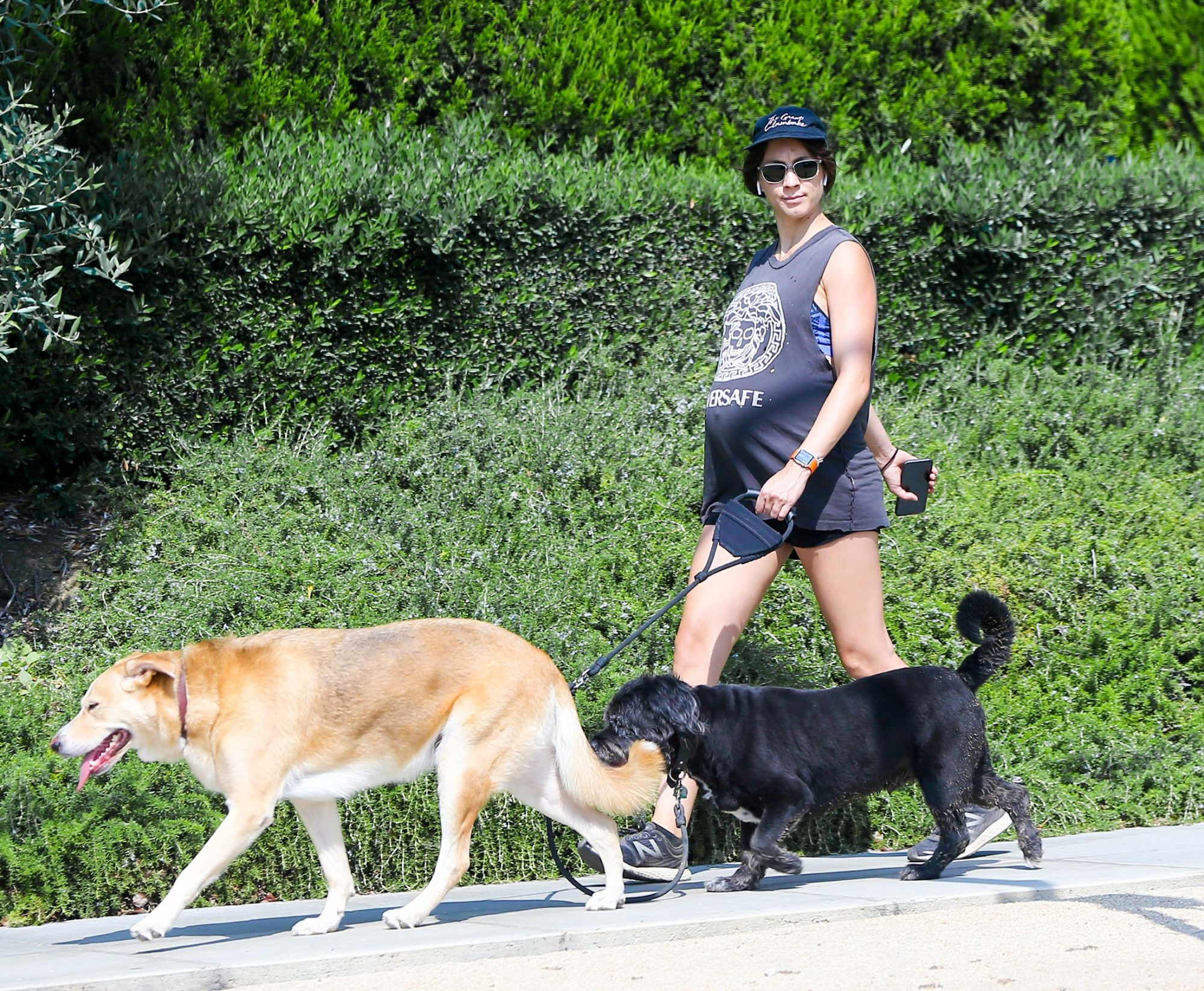 EXCLUSIVE: Pregnant Troian Bellisario showing off her baby bump as she goes for a walk with her two dogs