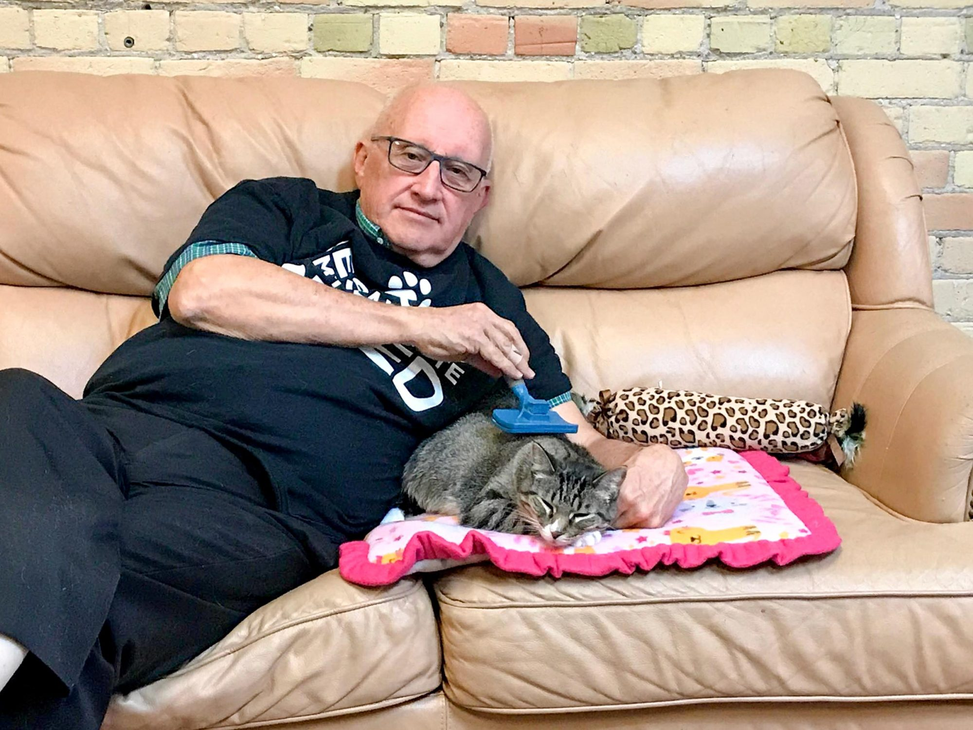 Volunteer cuddles and falls asleep with catsCourtesy Safe Haven Pet Sanctuary