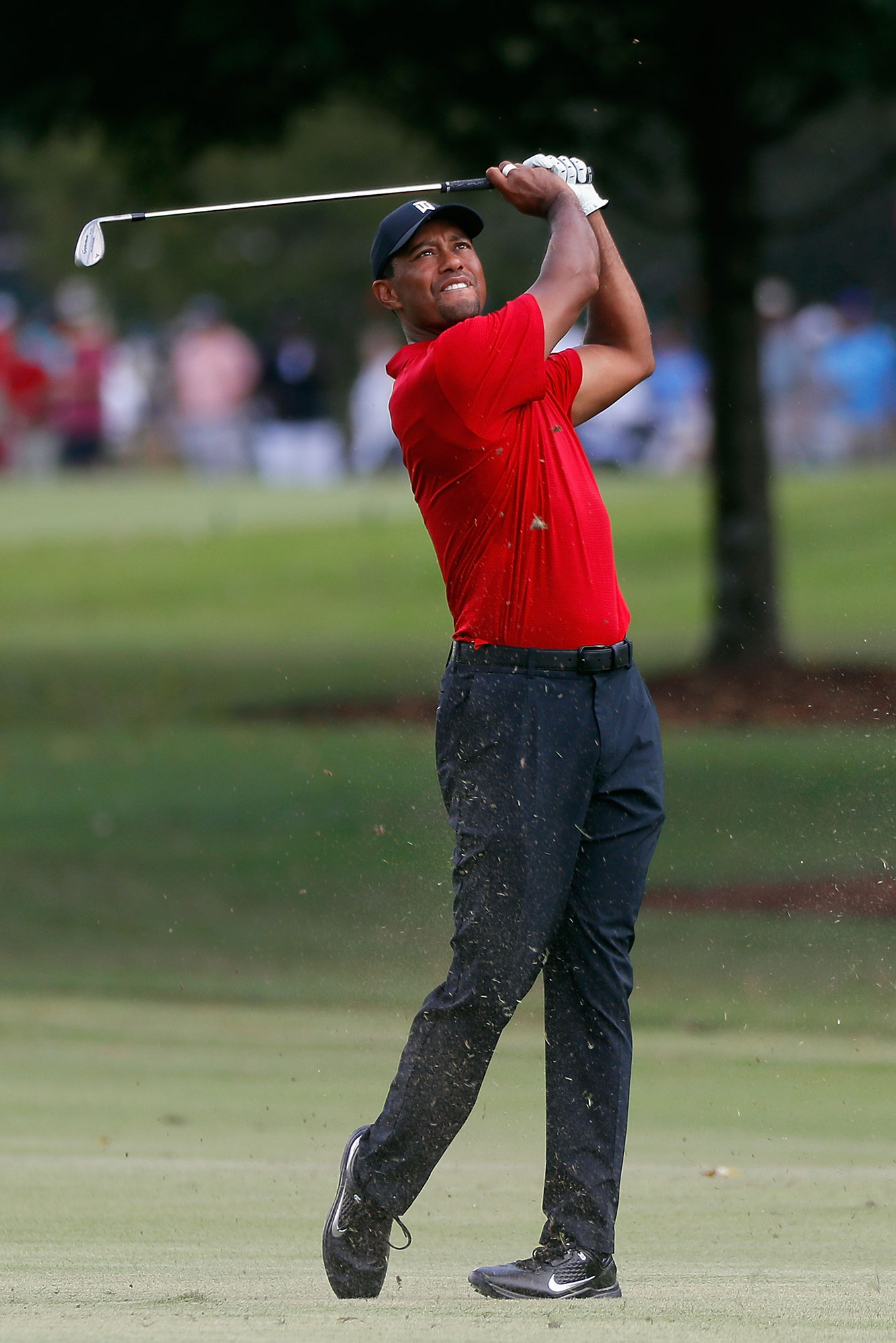 tiger-woods-a