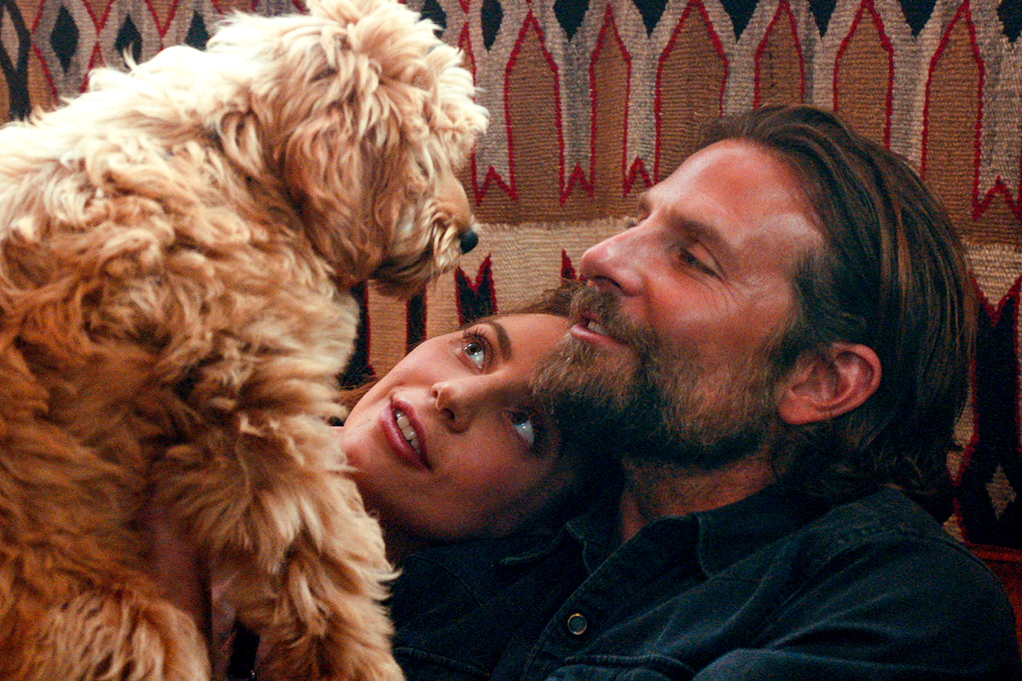 A Star Is BornLady Gaga, Bradley Cooper and his dog