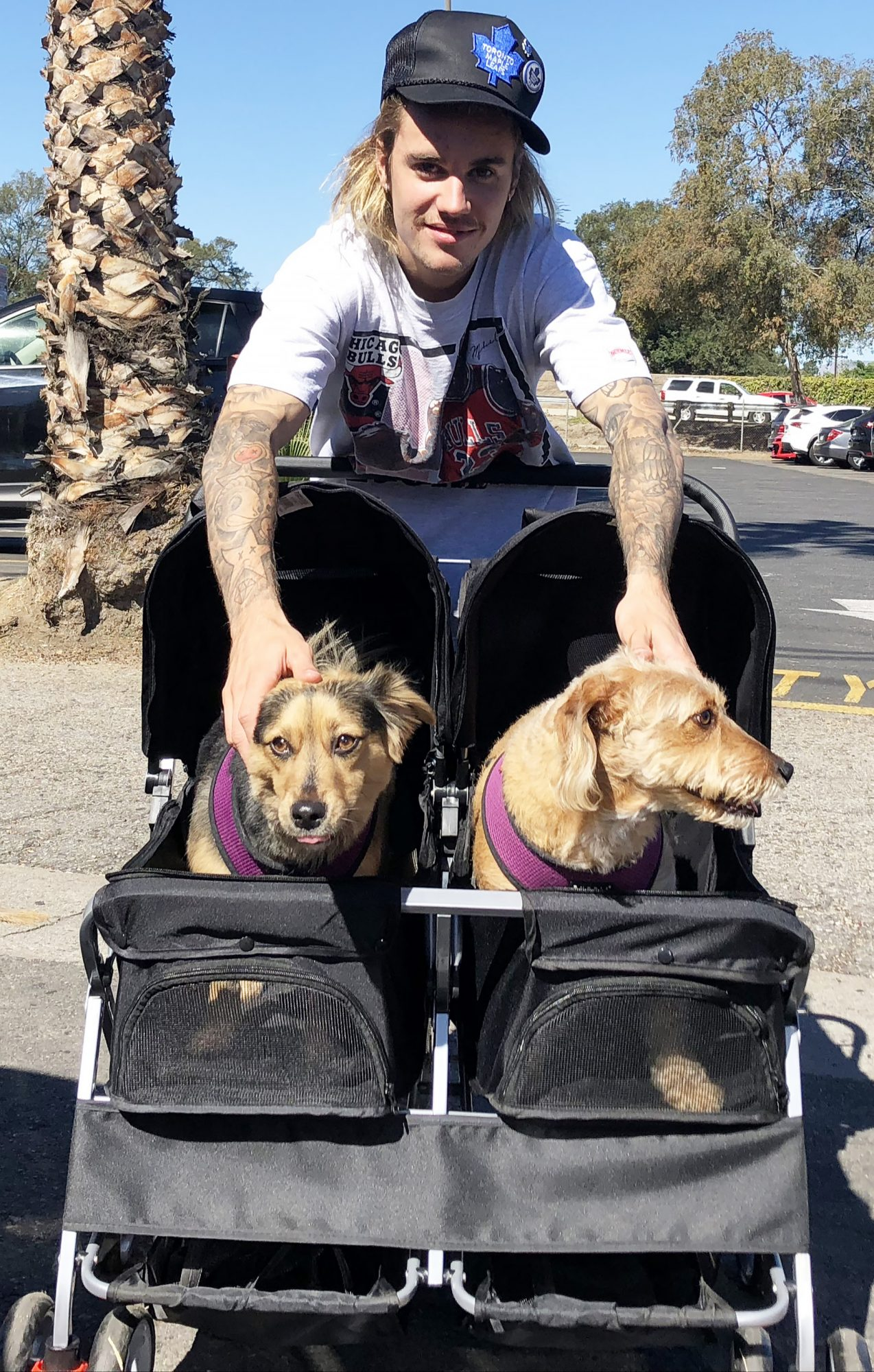 Justin Bieber poses with dogs before heading to soccer in Los Angeles, CA