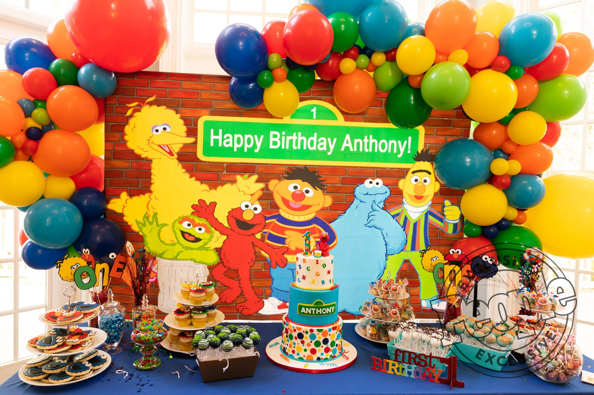 Jaclyn Stapp - Anthony's First BirthdayCredit: Tanya Mack