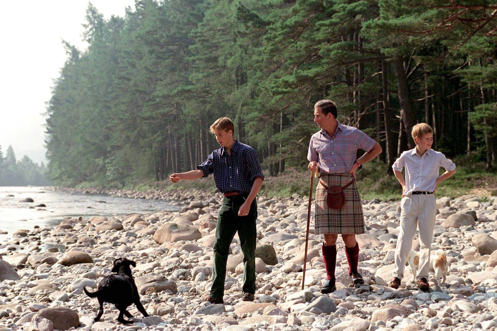 Charles, William, Harry And Dogs