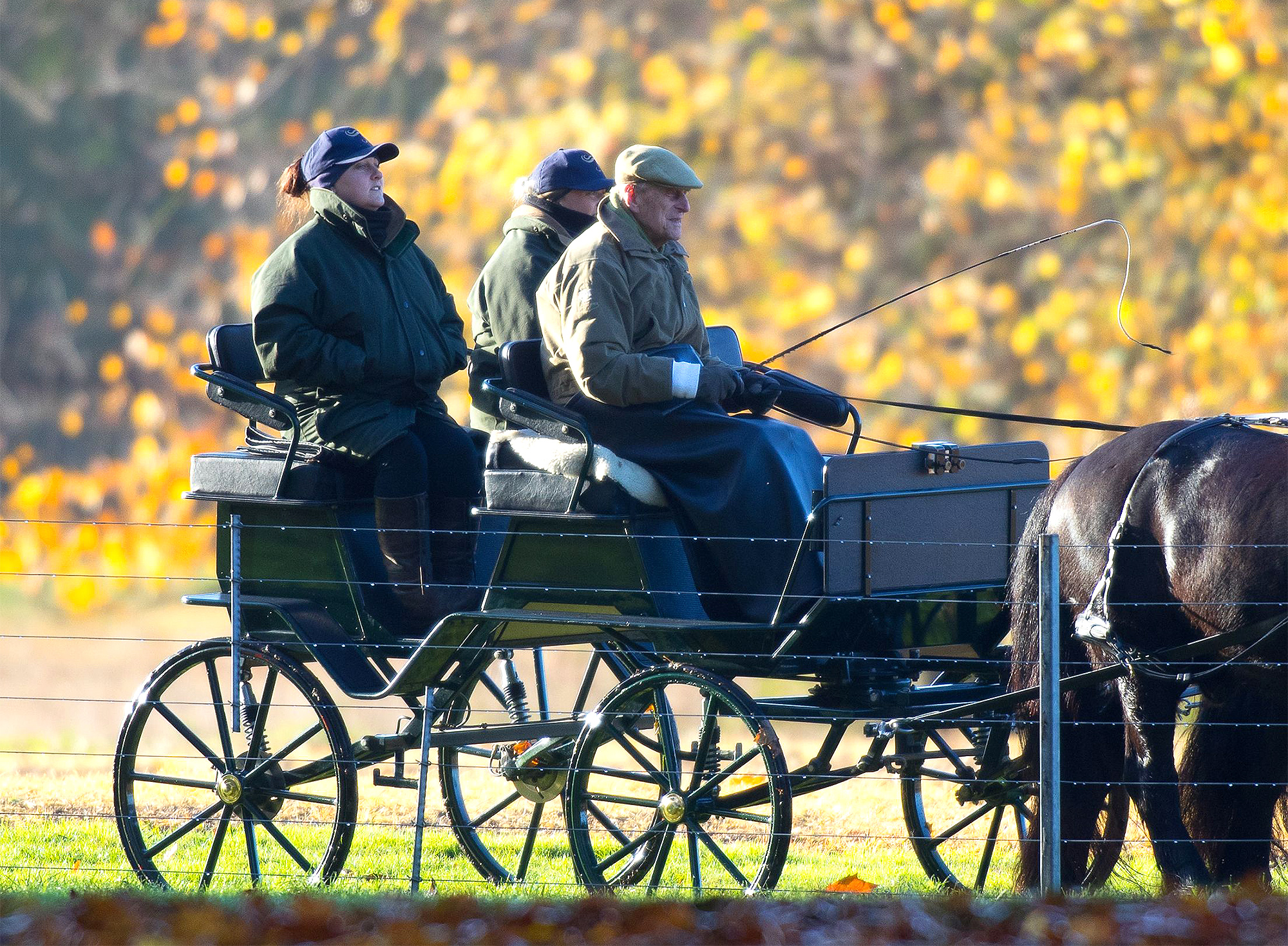 Prince Philip carriage driving, Windsor, UK - 12 Nov 2018