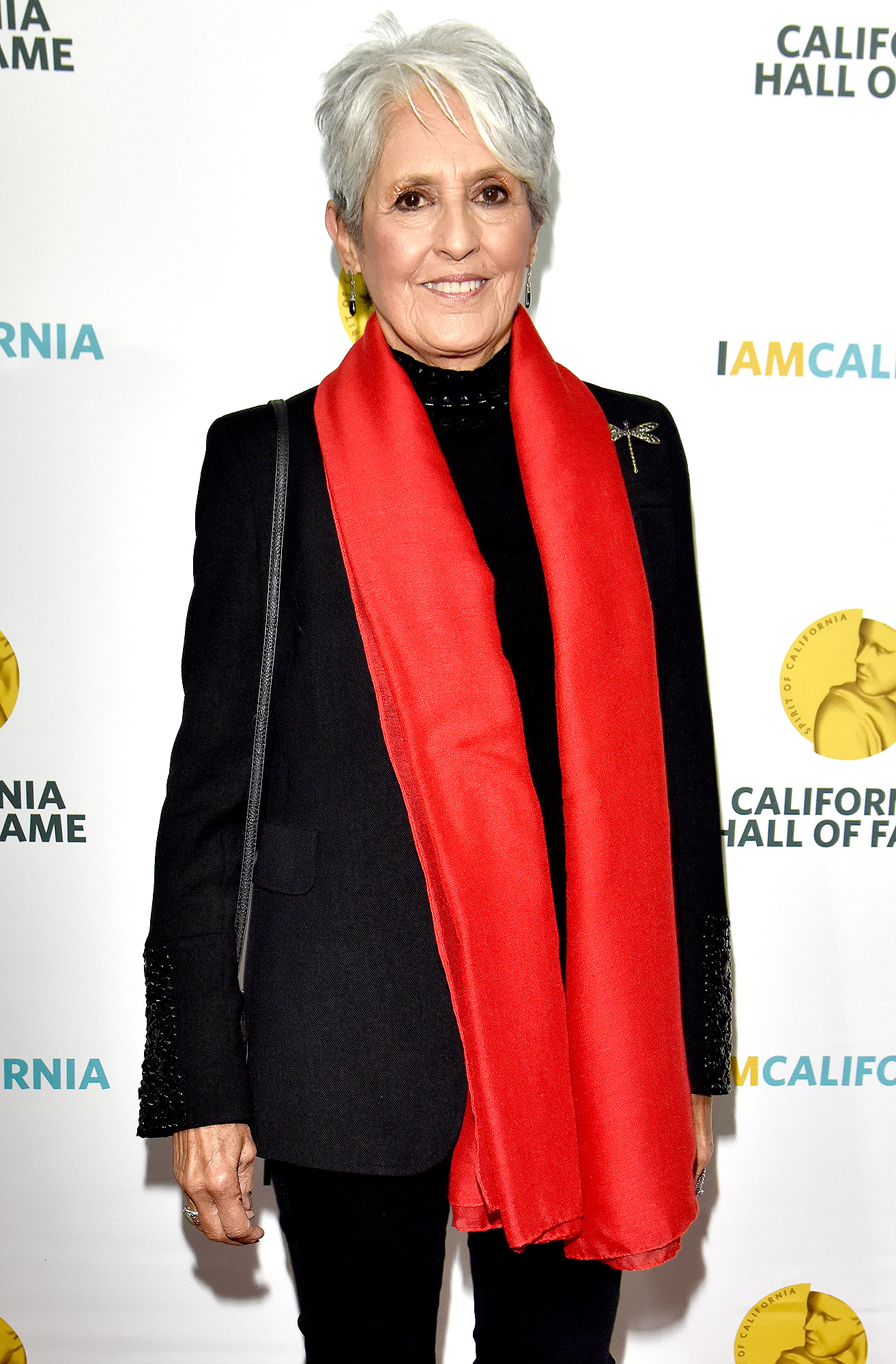 12th Annual California Hall Of Fame Ceremony - Arrivals