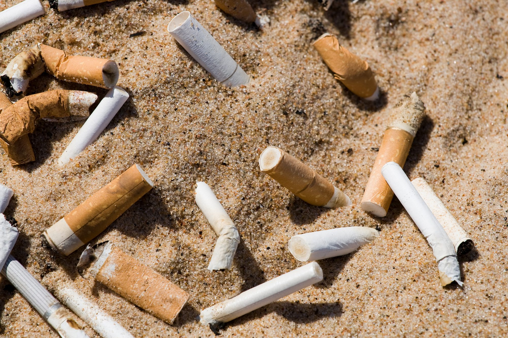 Cigarette butts pollution