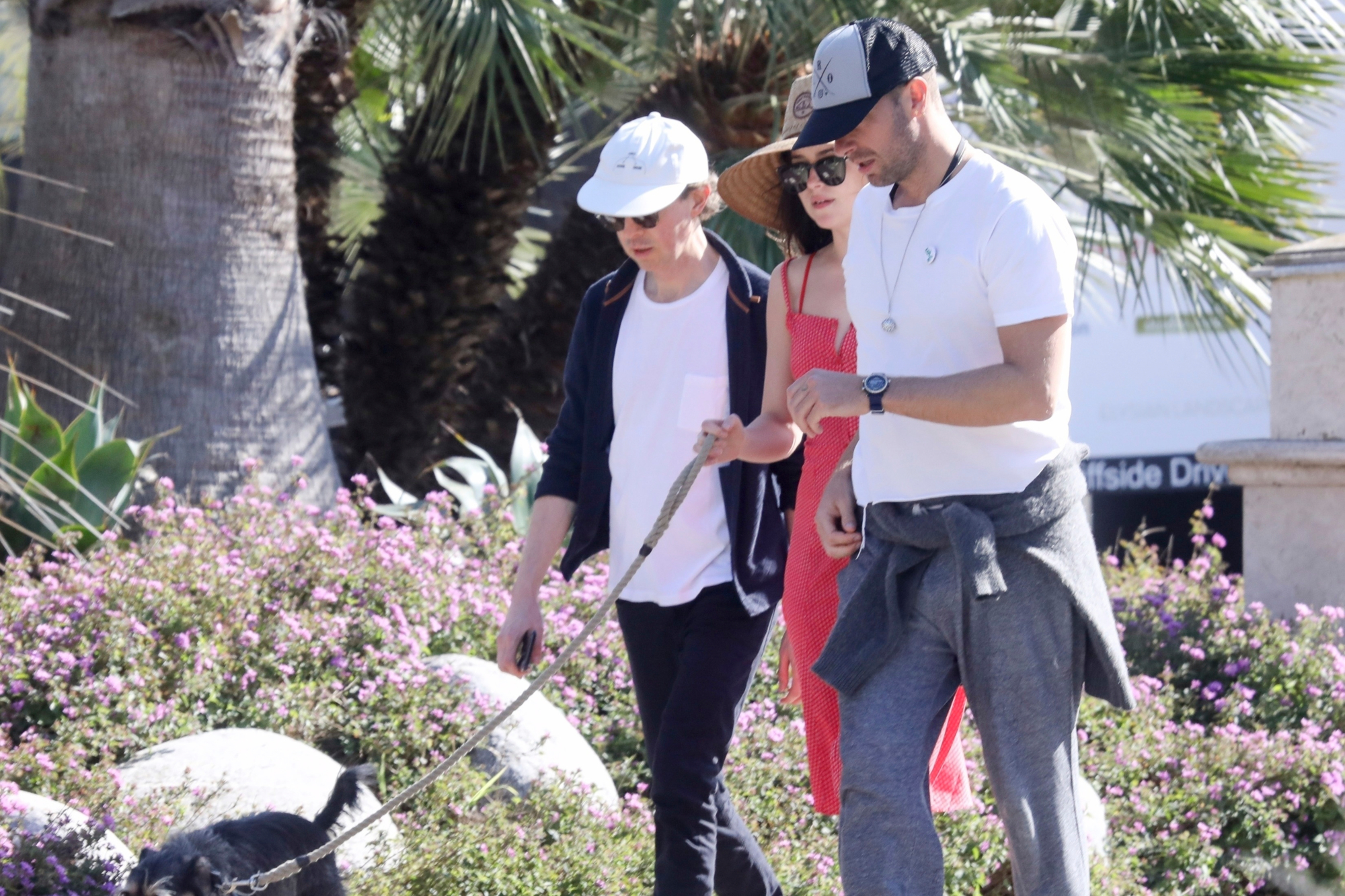*EXCLUSIVE* Chris Martin and Dakota Johnson barefoot in the park with pup