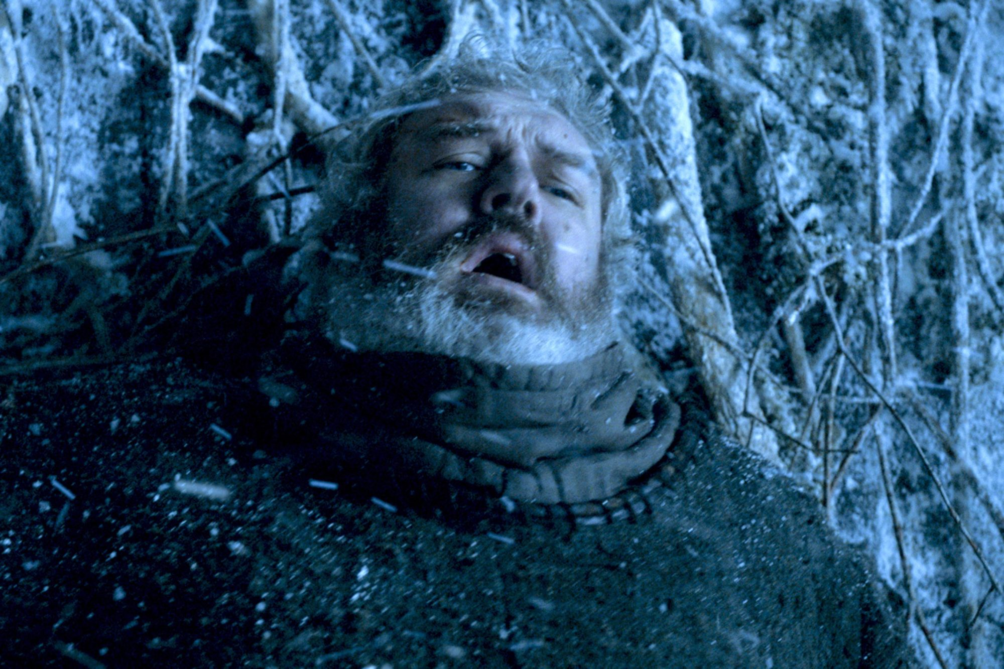 HODOR (season 6, episode 5 —  The Door )