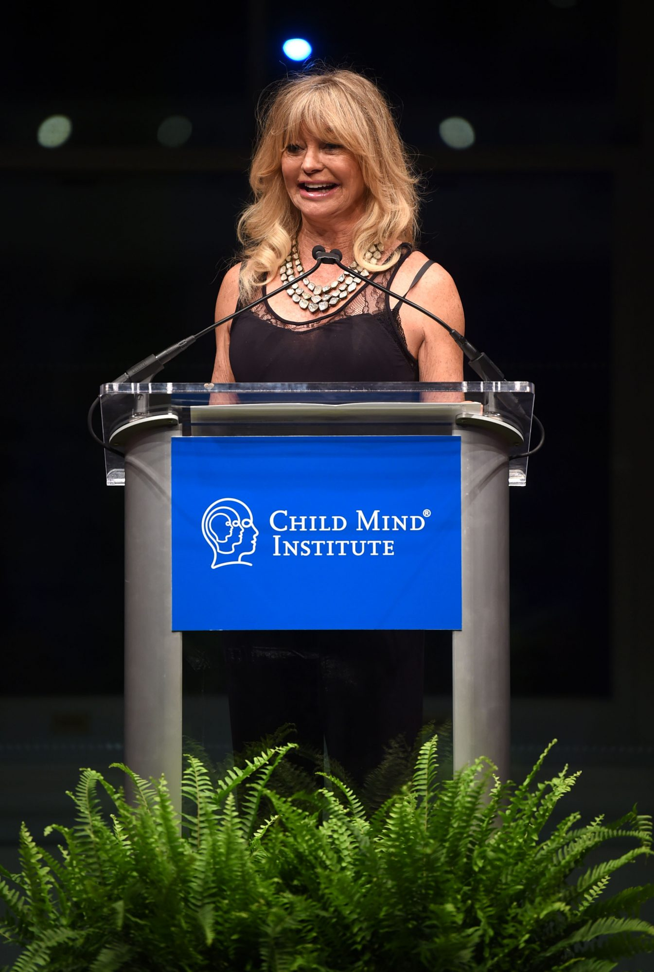 The Child Mind Institute 2019 Change Maker Awards