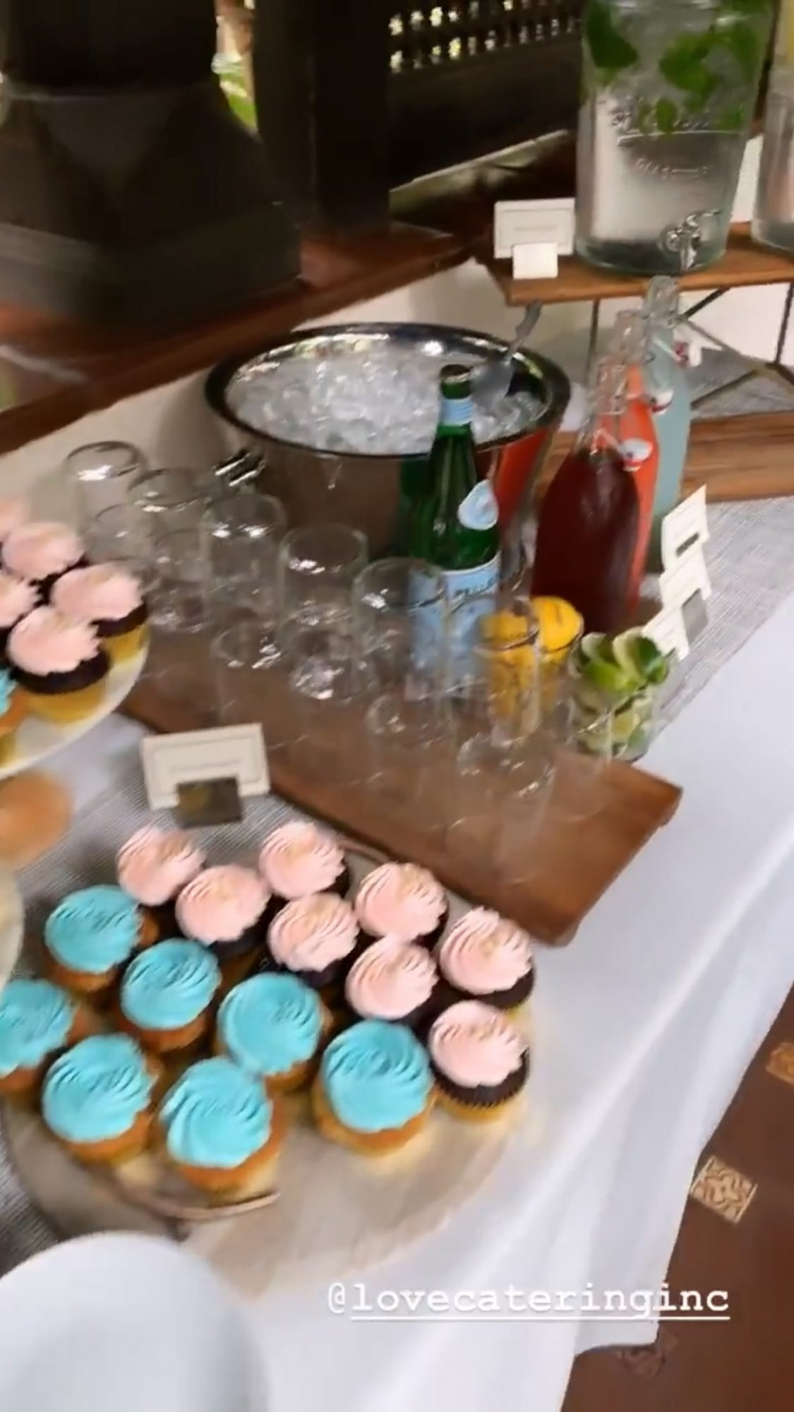 Johnny Glaecki and Alaina Marie Meyer gender reveal party