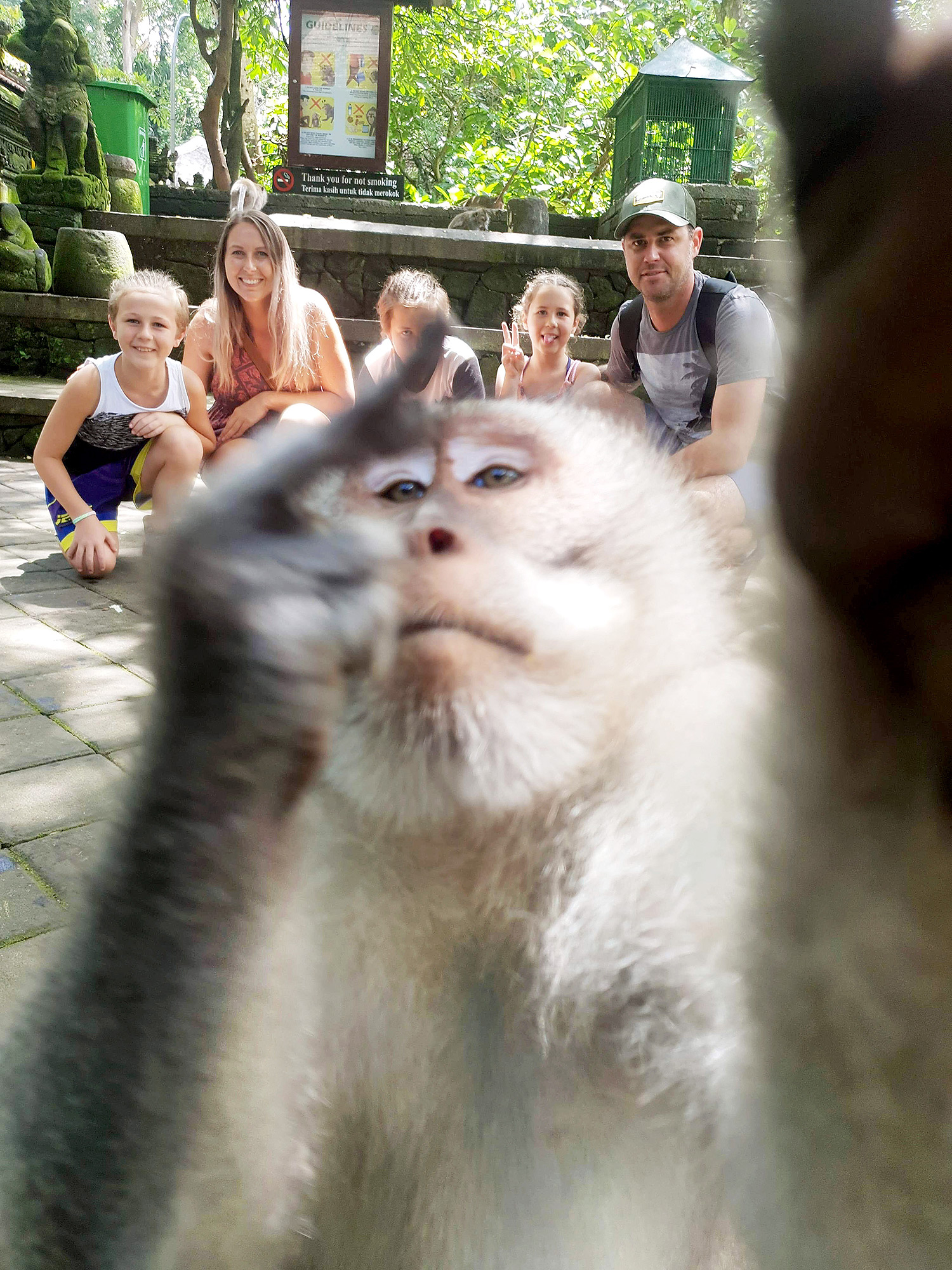 A monkey sticking its middle finger up, photobombing a family photo in Bali, Indonesia