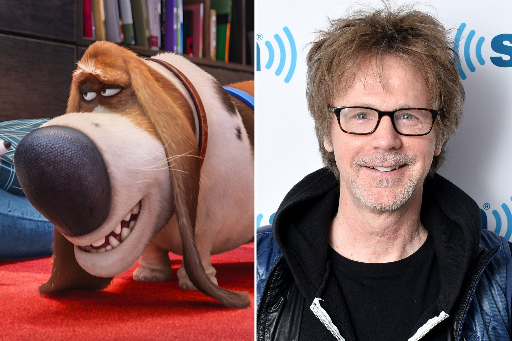 The Secret Life of Pets DANA CARVEY