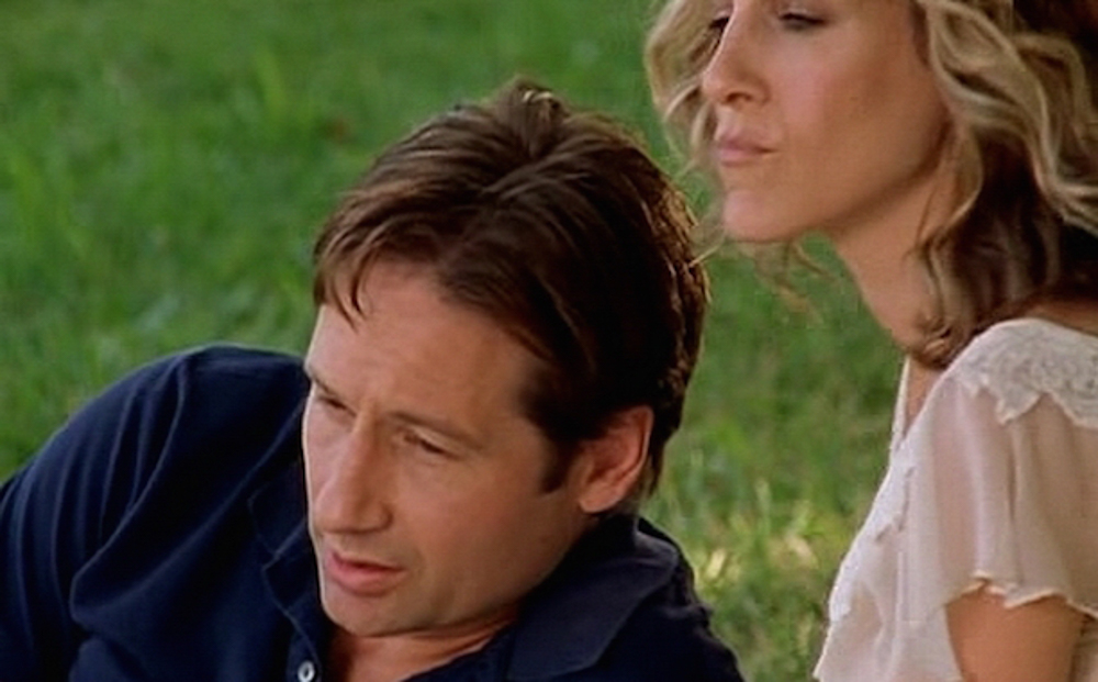David Duchovny (Sex and the City)HBO