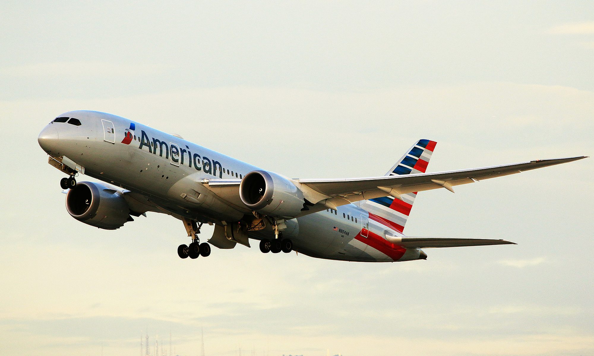American Airlines Flies Dog to the Wrong City