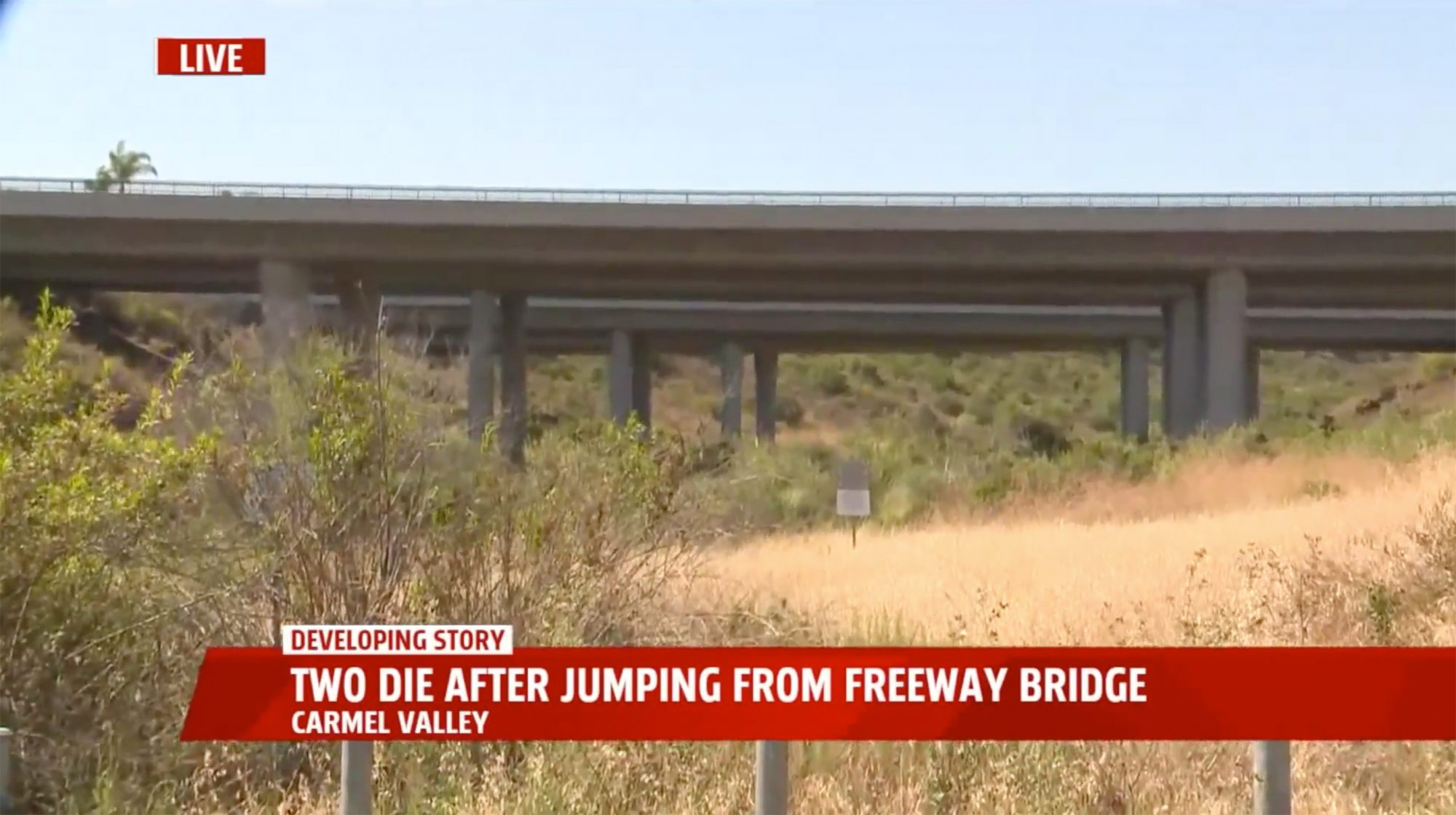 Two men died when they jumped off a freeway overpass following a minor crash overnight in San Diego