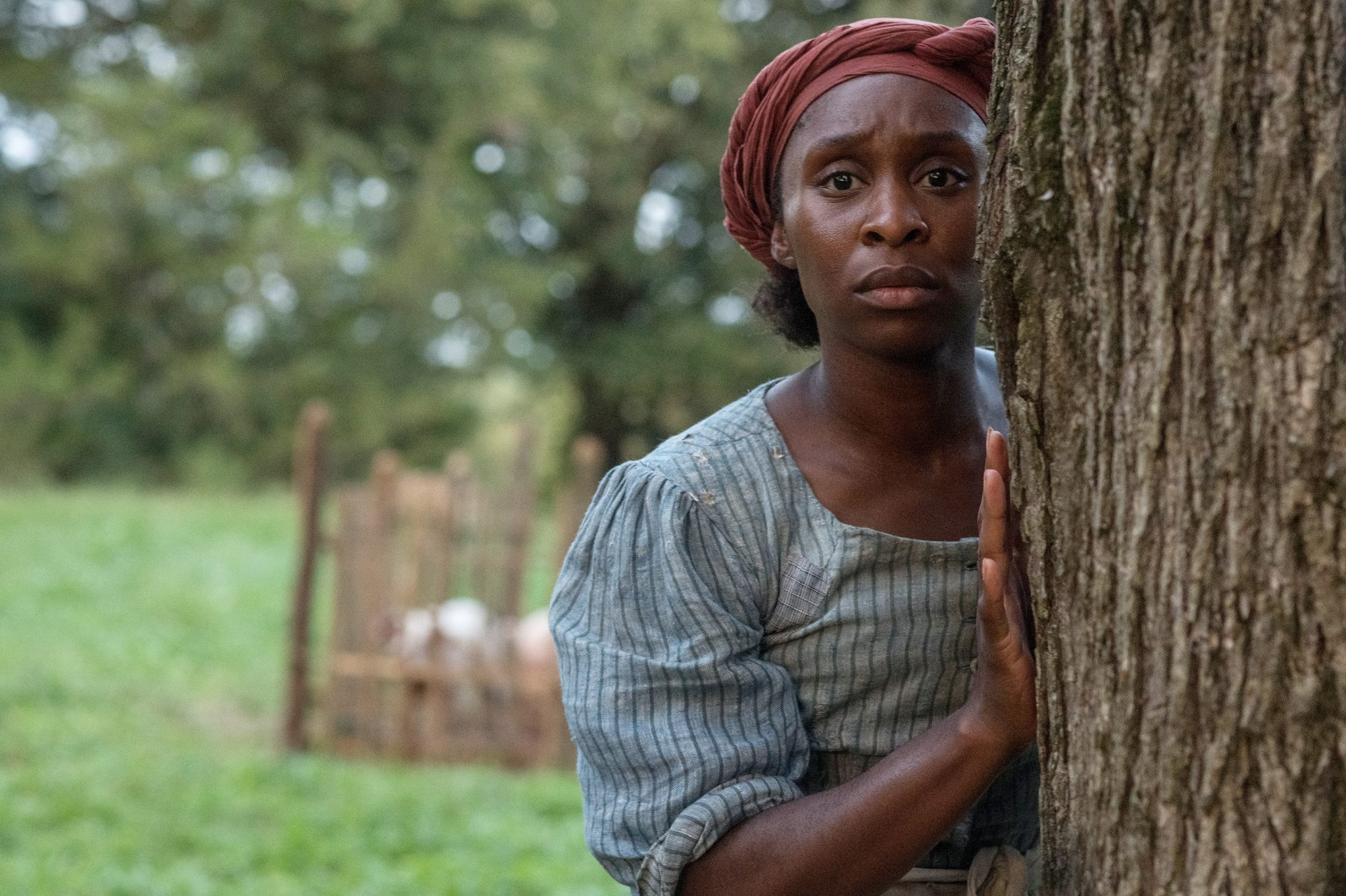 4130_D002_00002_RC Cynthia Erivo stars as Harriet Tubman in HARRIET, a Focus Features release. Credit: Glen Wilson / Focus Features