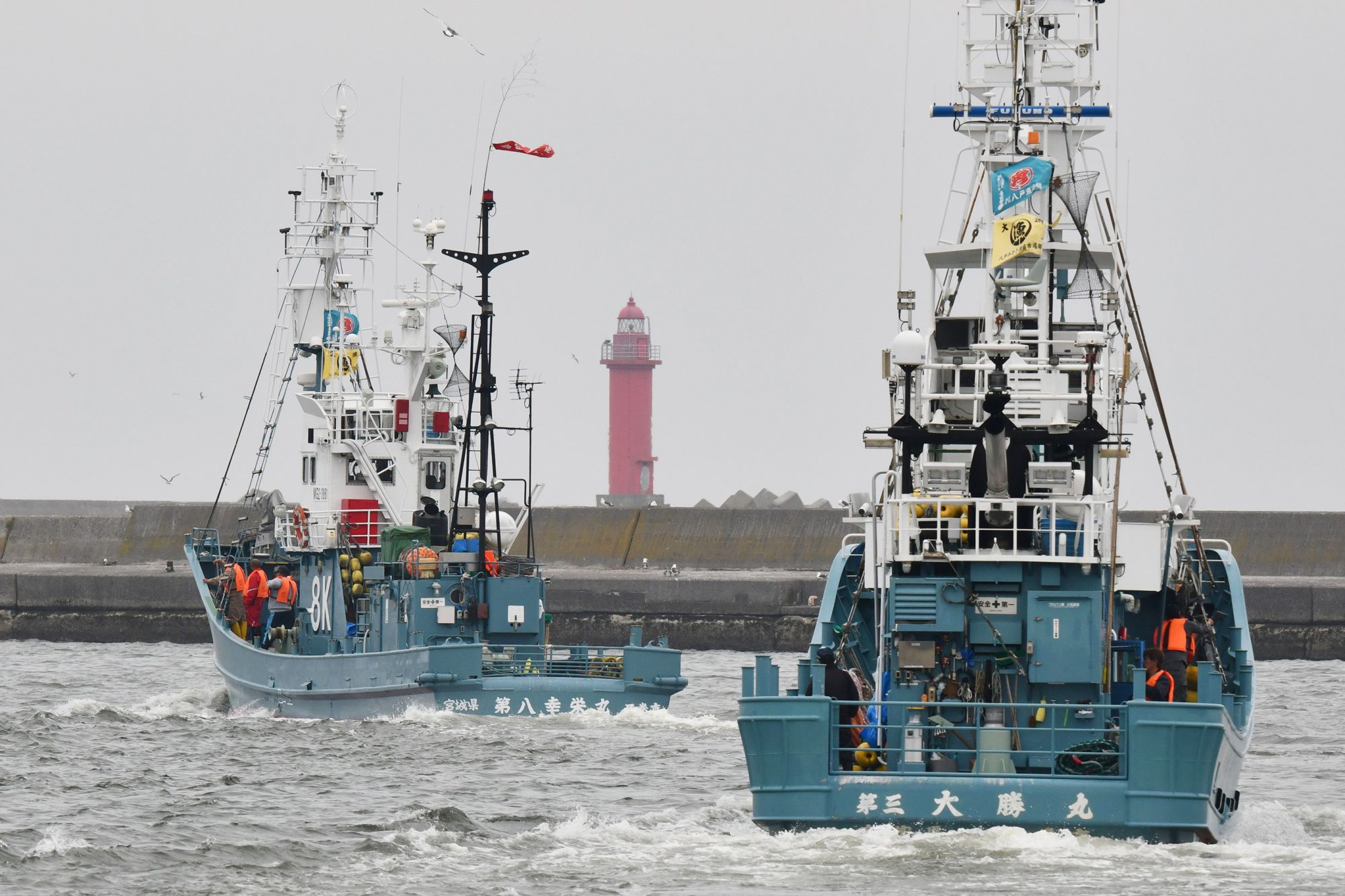 Japanese whalers brought ashore their first catches on July 1 as they resumed commercial hunting after a three-decade hiatus, brushing aside criticism from activists who say the practice is cruel and outdated