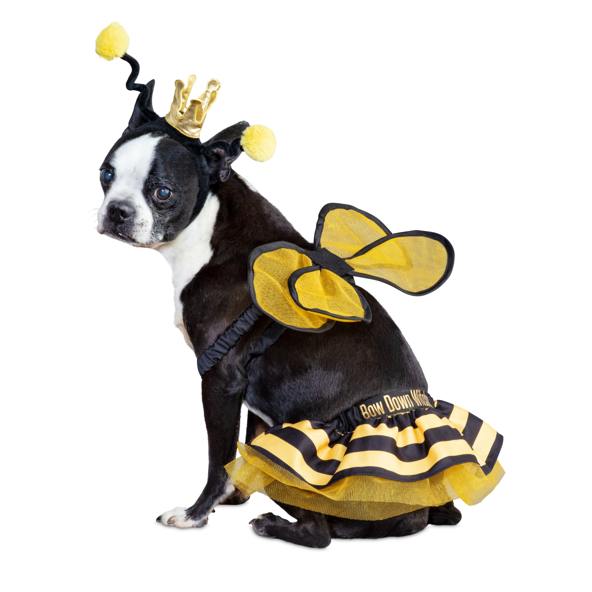 Bee Royalty Pet Costume