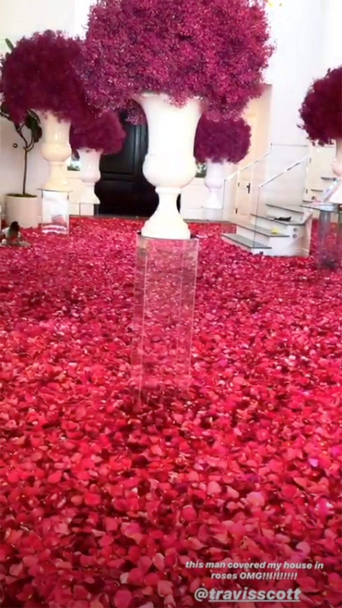 Kylie Jenner house covered in roses