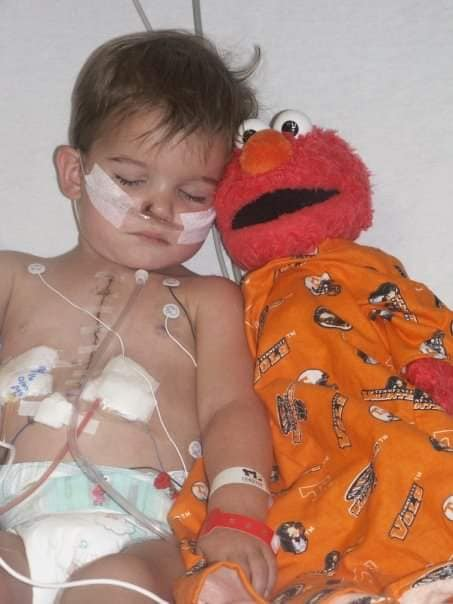 Elmo Doll Missing for 10 Years Returns to Late Boy's Mom