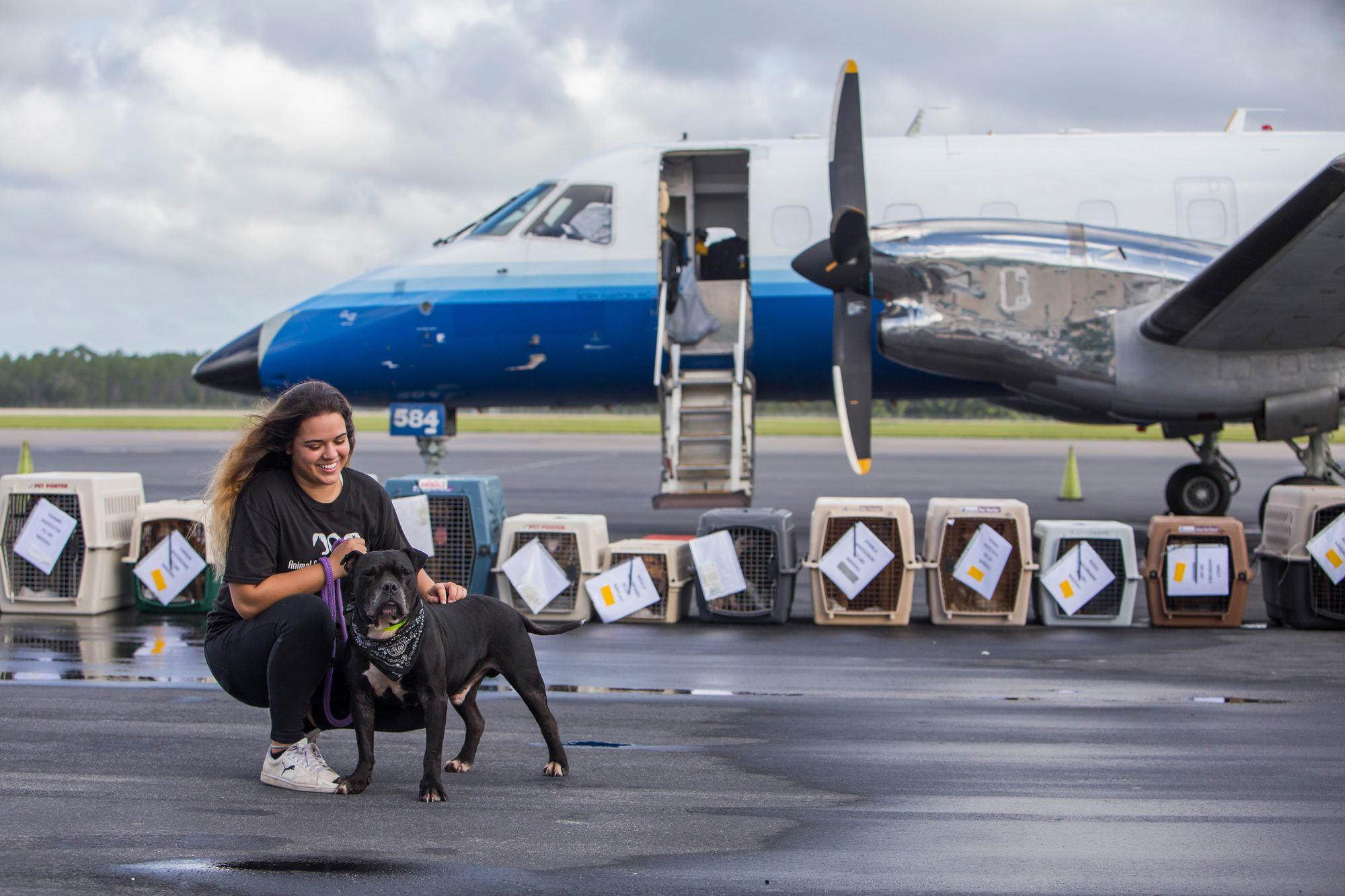 The Humane Society of the United States funded a rescue flight of 80 animals from 3 Florida shelters along the east coast, Jacksonville Animal Care & Protective Services, St Johns County Pet Center and Nassau Humane Society.