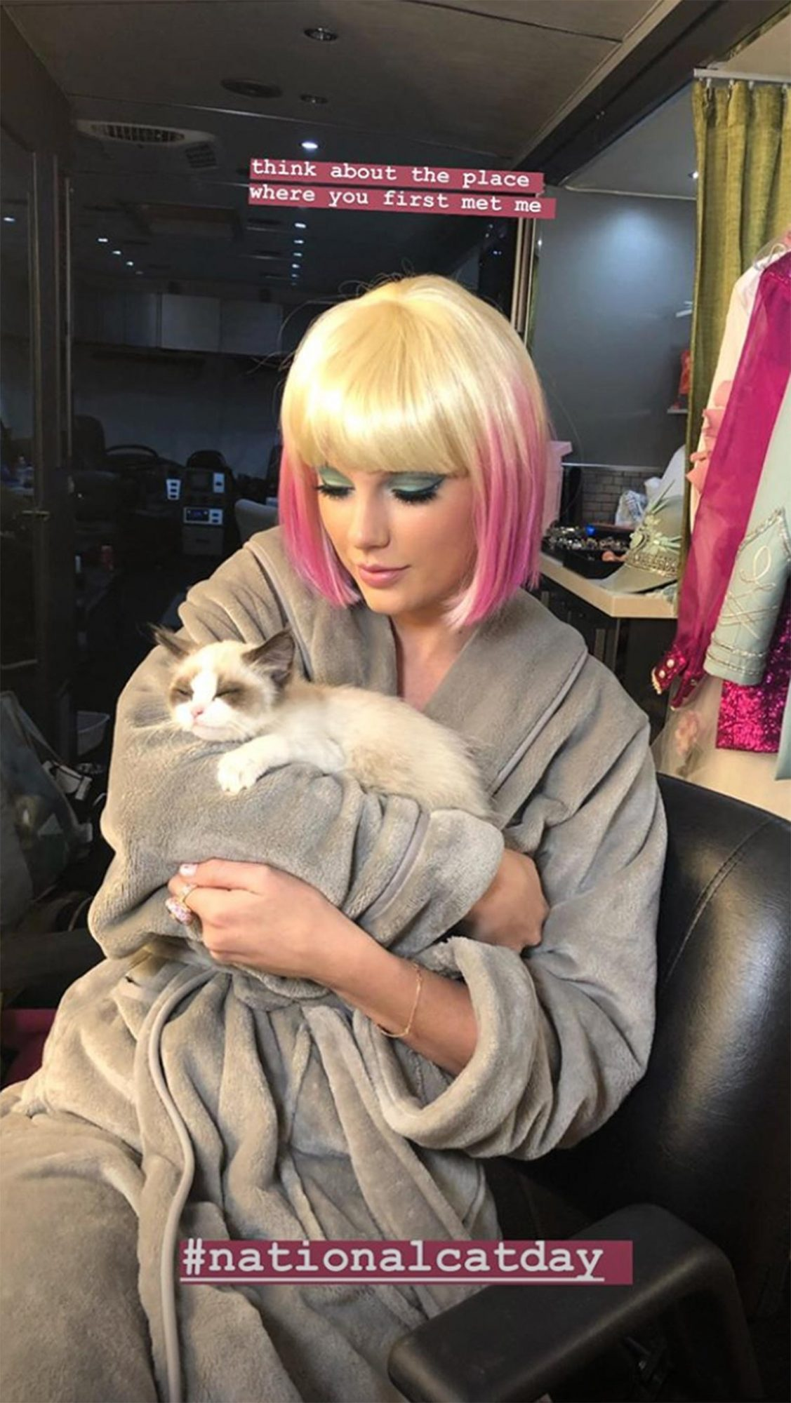Taylor Swift National Cat Day