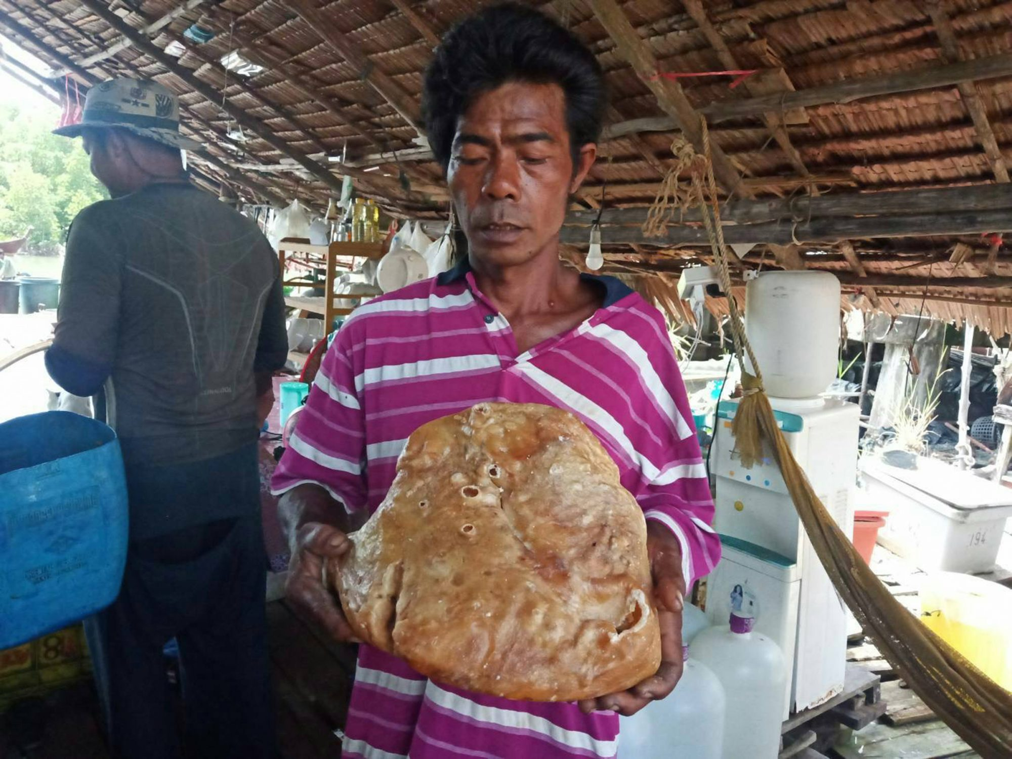 A penniless rubbish collector is hoping a lump of yellow wax he found on a beach is valuable whale vomit. Somsak Boonrith, 45, stumbled on the yellow chunk while he was sifting through trash on Tarutao island is Satun, southern Thailand last Sunday (10/11) afternoon.