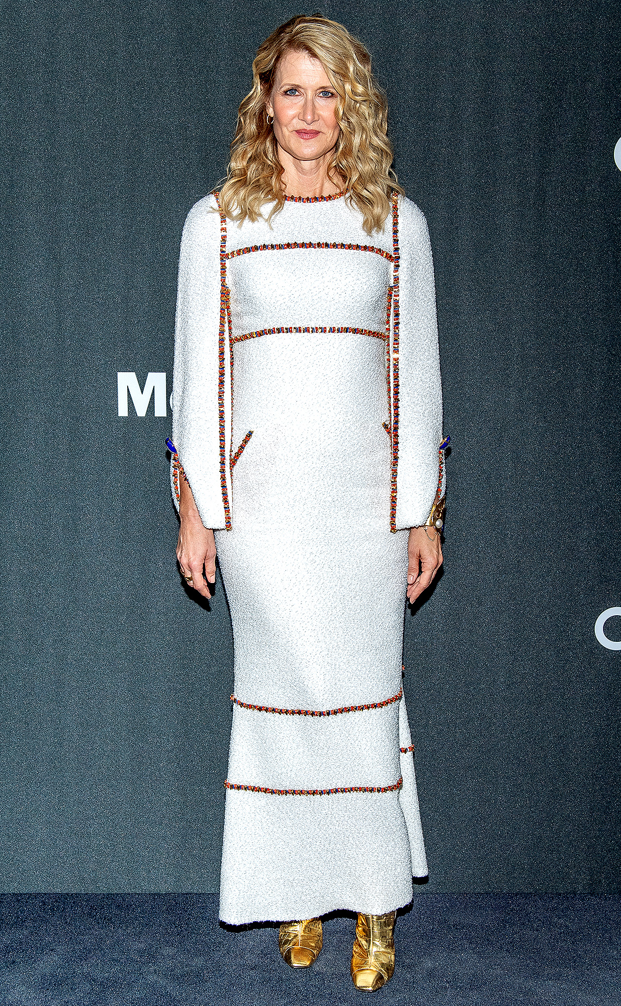 Laura Dern attends the 2019 Museum Of Modern Art Film Benefit: A Tribute To Laura Dern