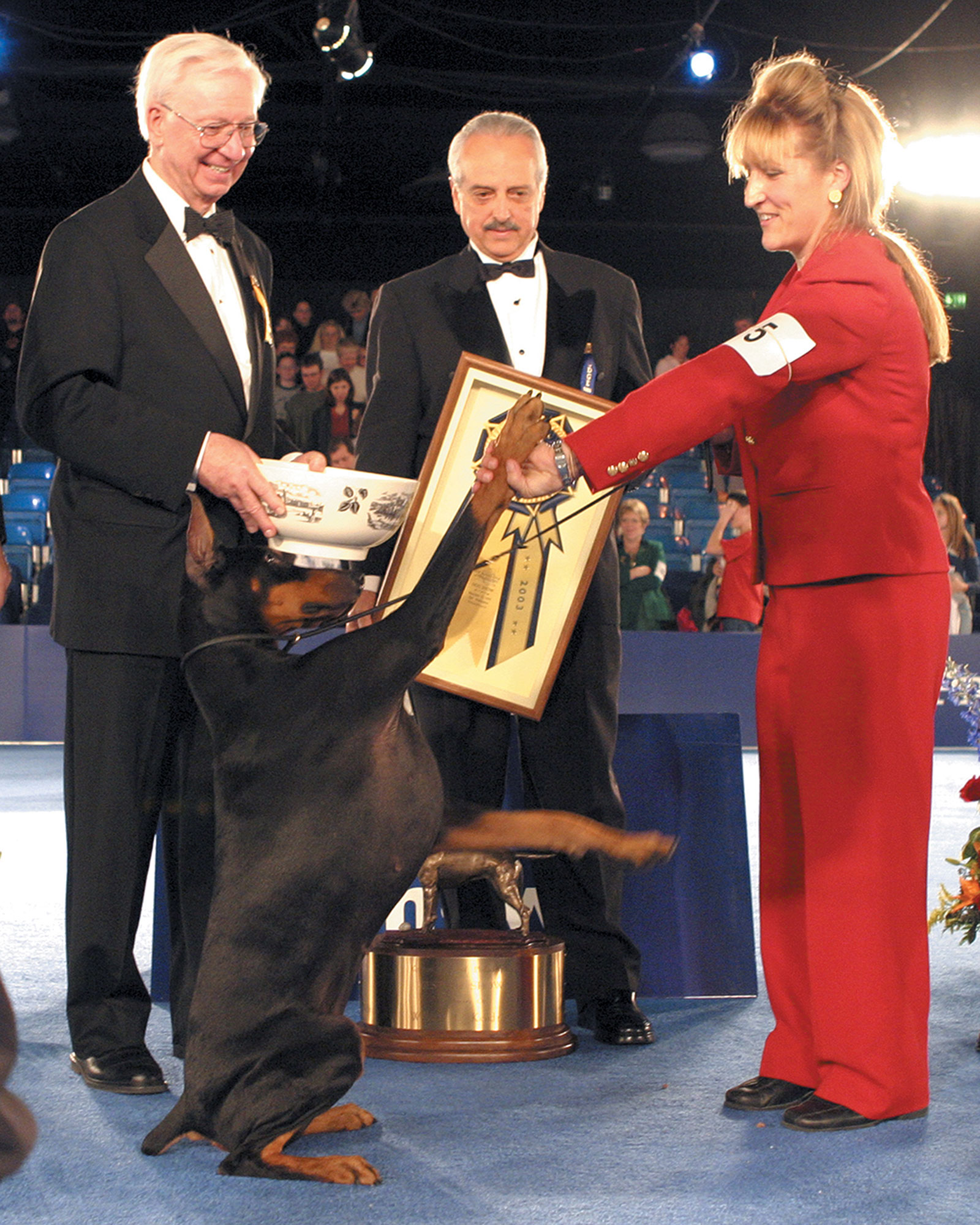 national-dog-show-14