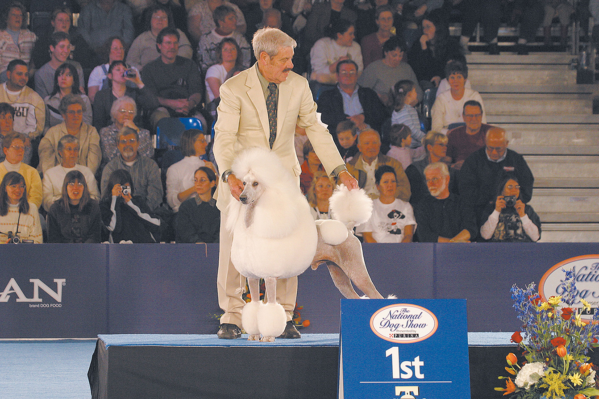 national-dog-show-15