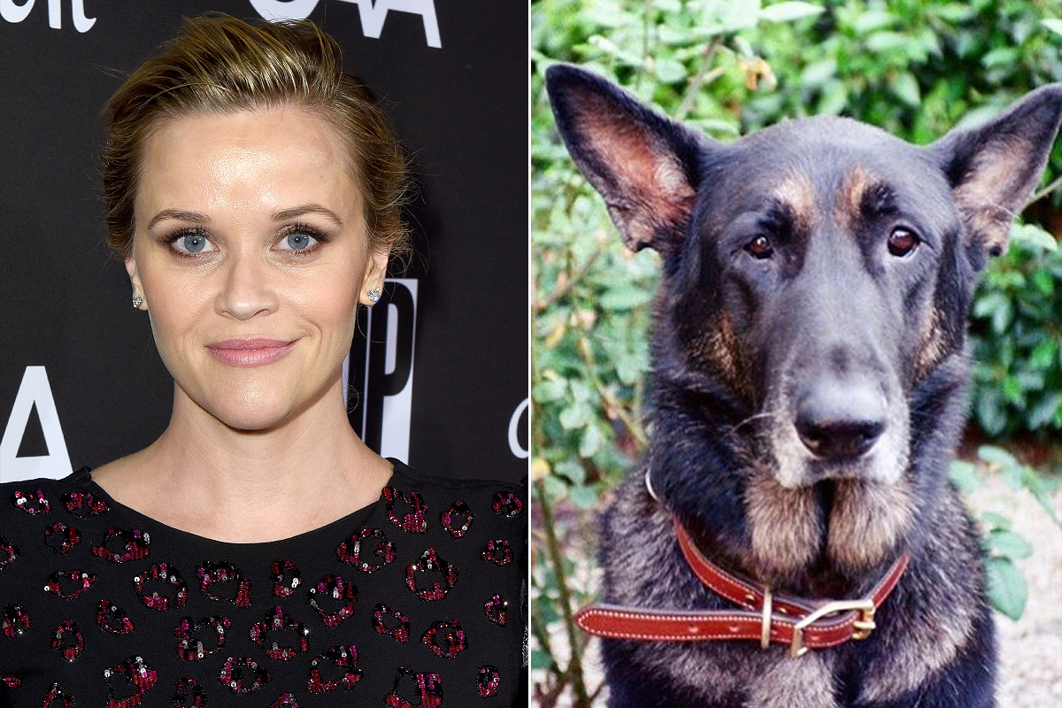 Reese Witherspoon dog Nash