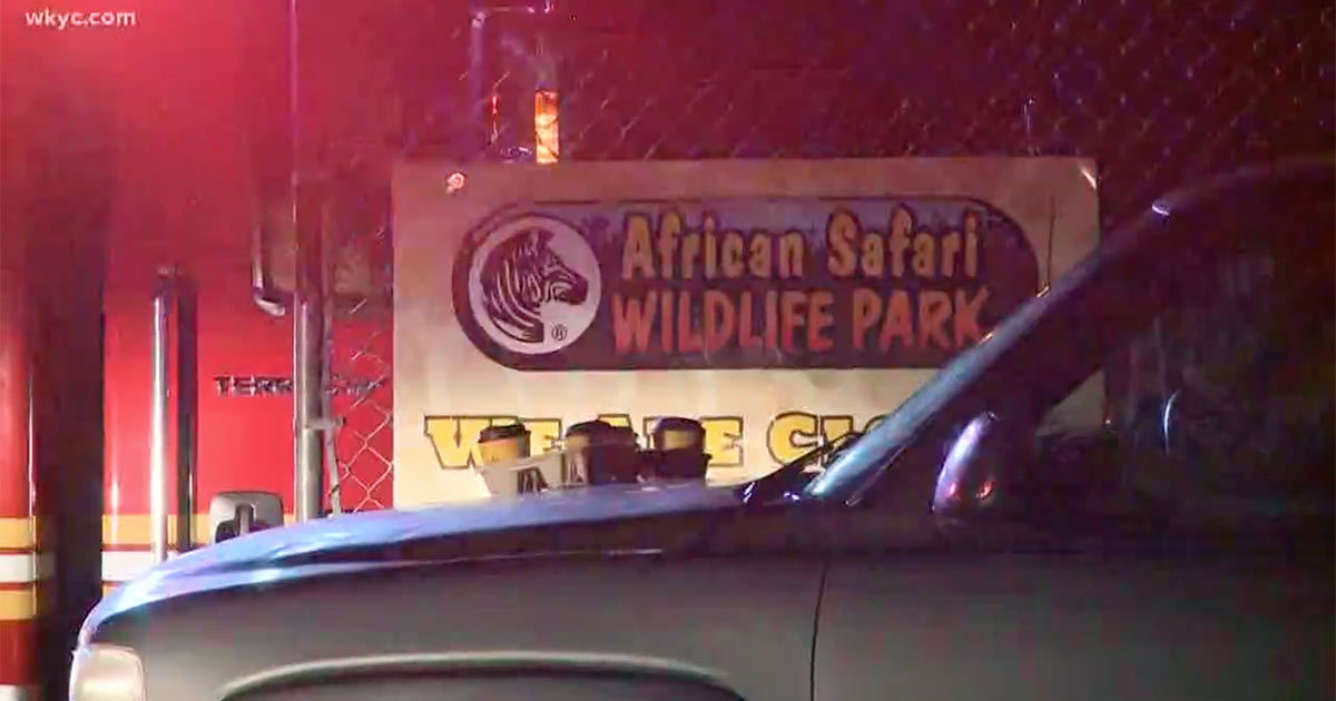 African Safari Wildlife park fire