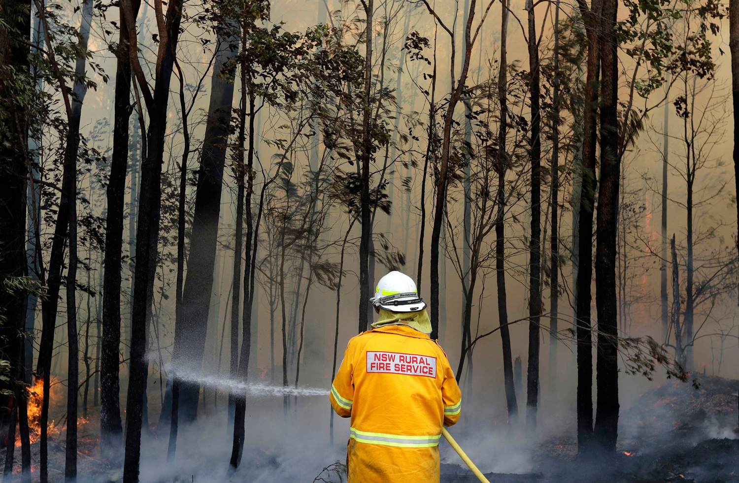 A firefighter manages a controlled burn near Tomerong, Australia