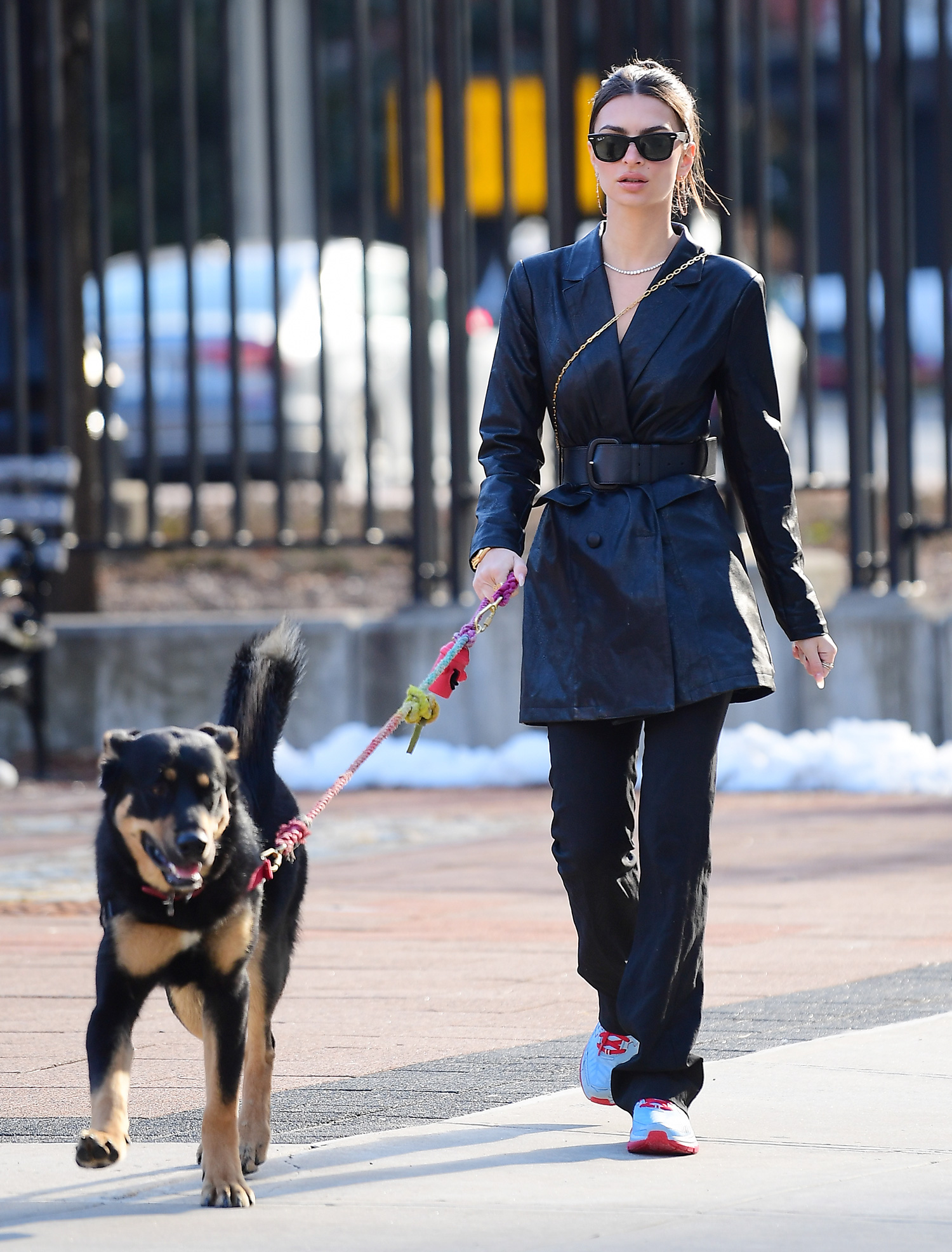 Emily Ratajkowski Walks her Dog Colombo in Black Belted Trench Coat and Sneakers